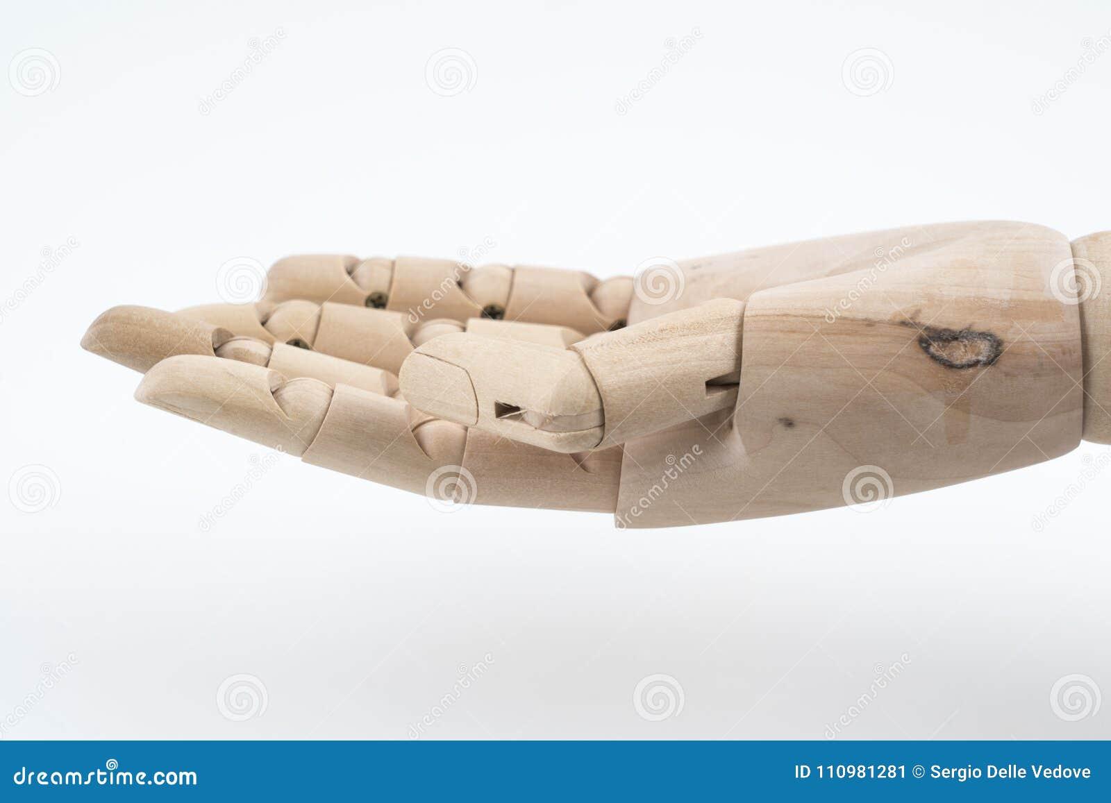 姿态一被联接的木手开放向上