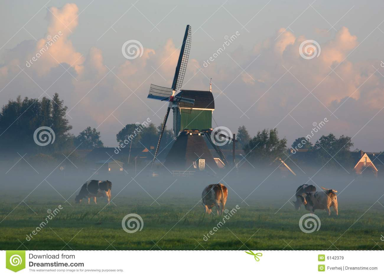 威胁荷兰语雾早晨