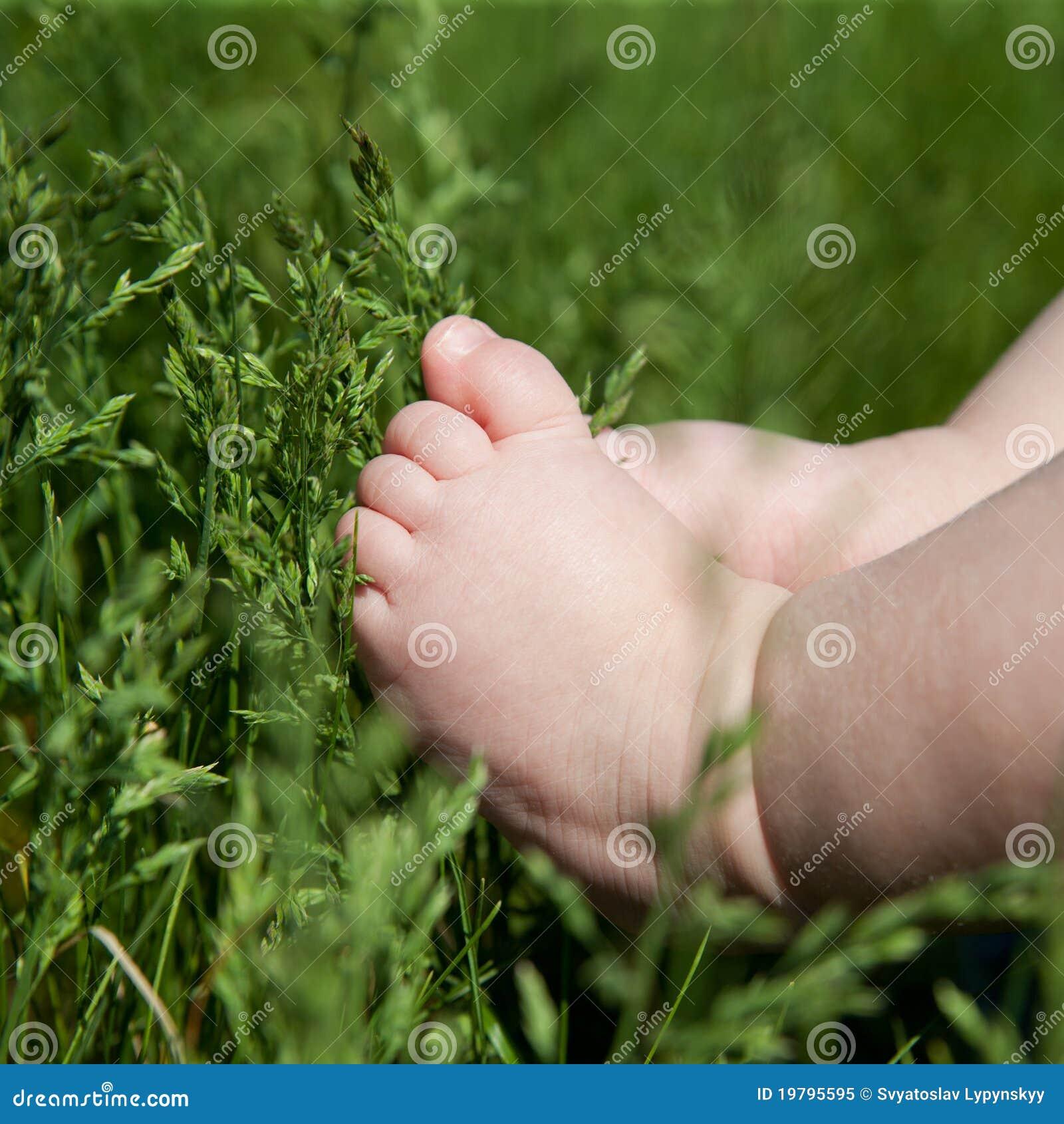 婴孩英尺草绿色