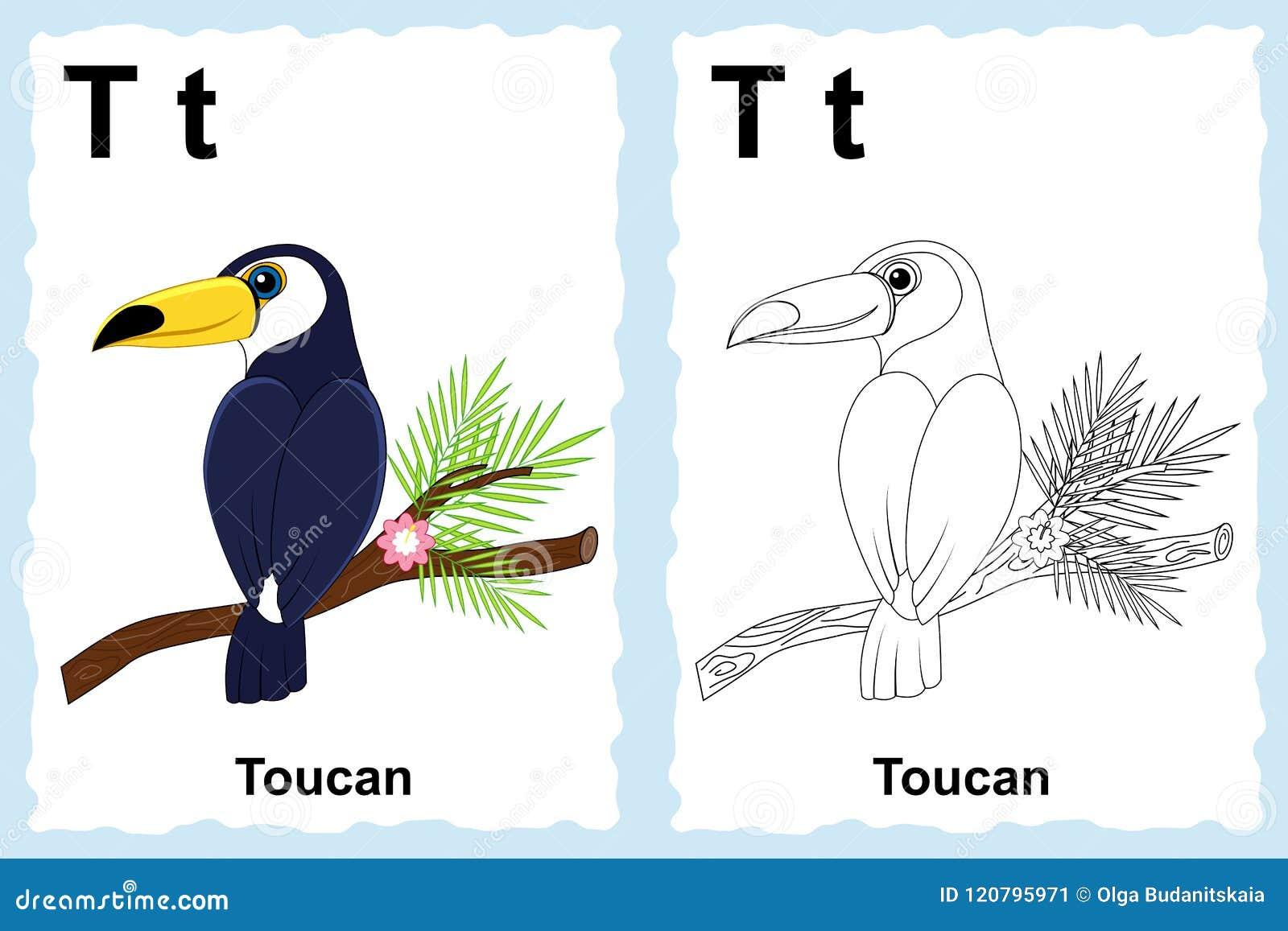 字母表与概述剪贴美术的彩图页对颜色 Lett