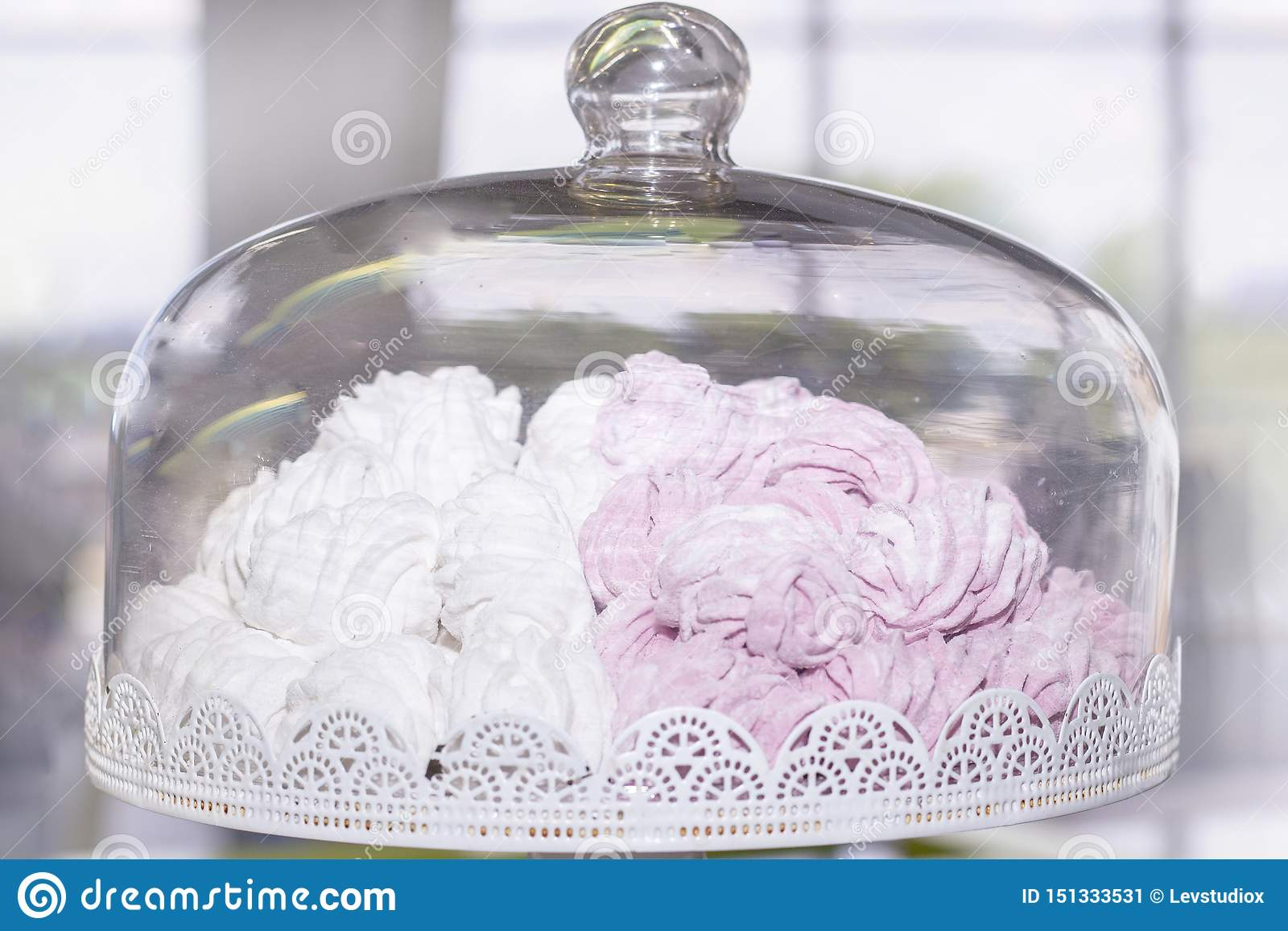 存放的蛋糕容器容器用白色和桃红色蛋白软糖