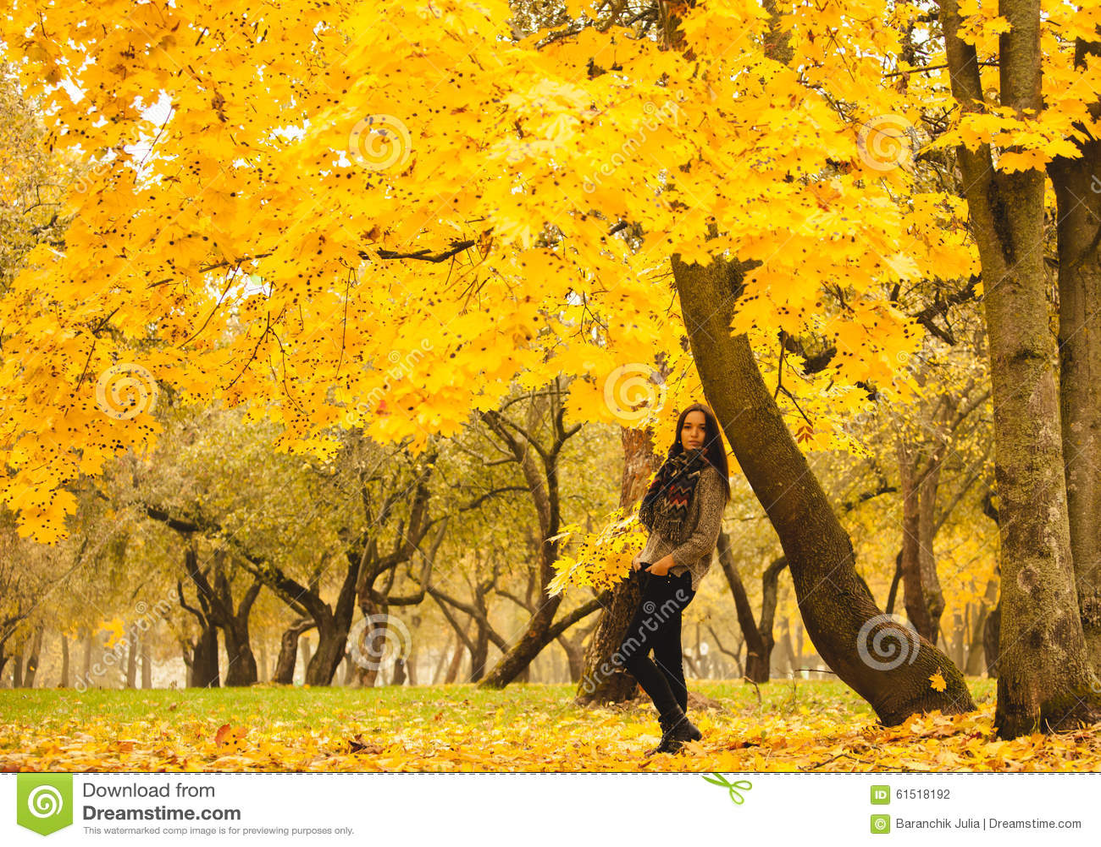孤独的妇女有休息在黄色树下在一有雾的秋天天