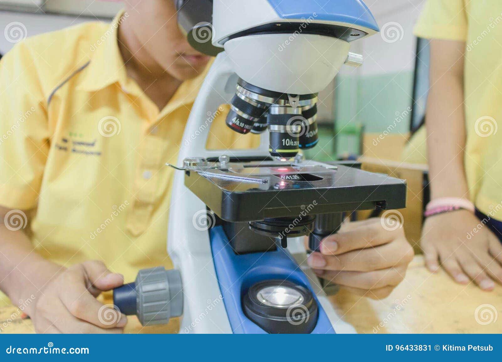 学生在科学实验室