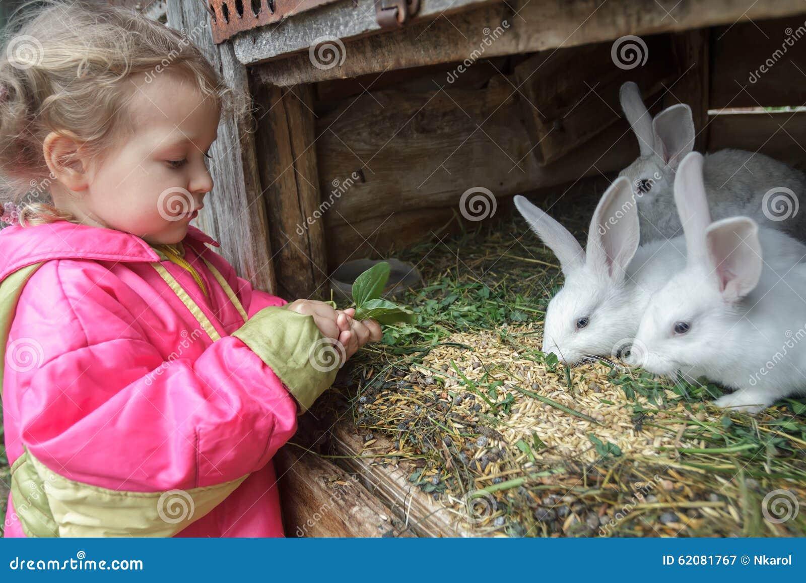学龄前儿童白肤金发的女孩哺养的农场与欧洲亚麻籽车前的家兔生叶