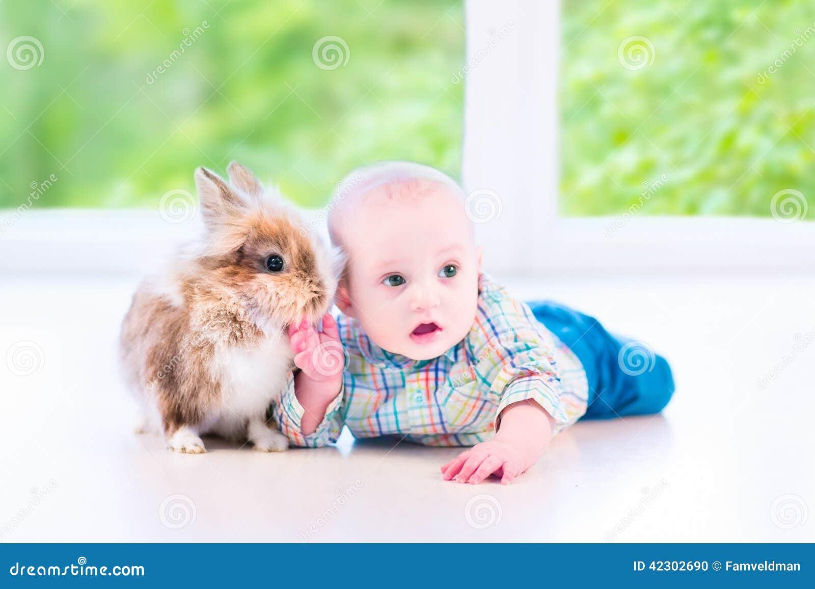 婴孩和兔宝宝
