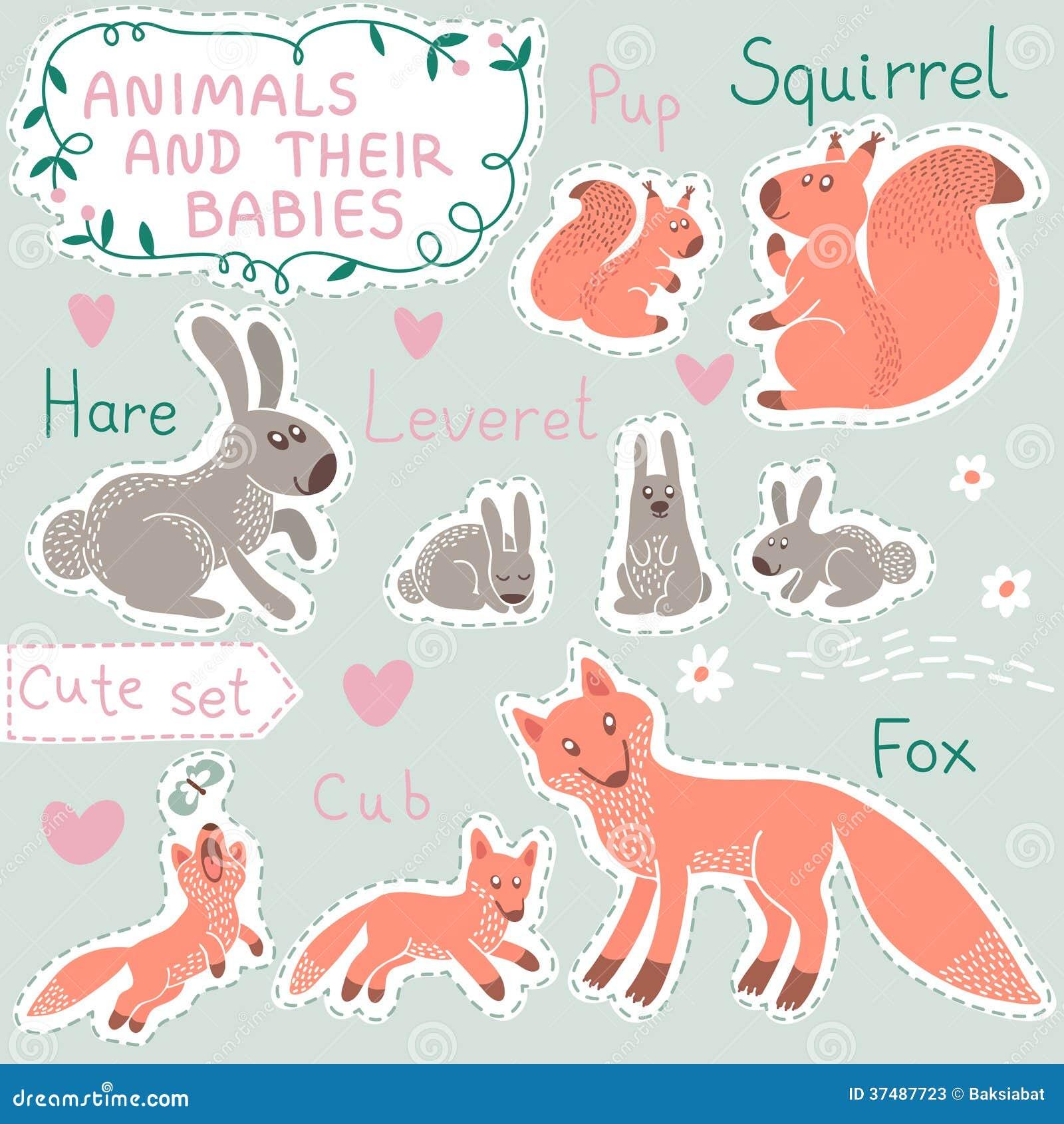 婴孩和妈妈动物集合