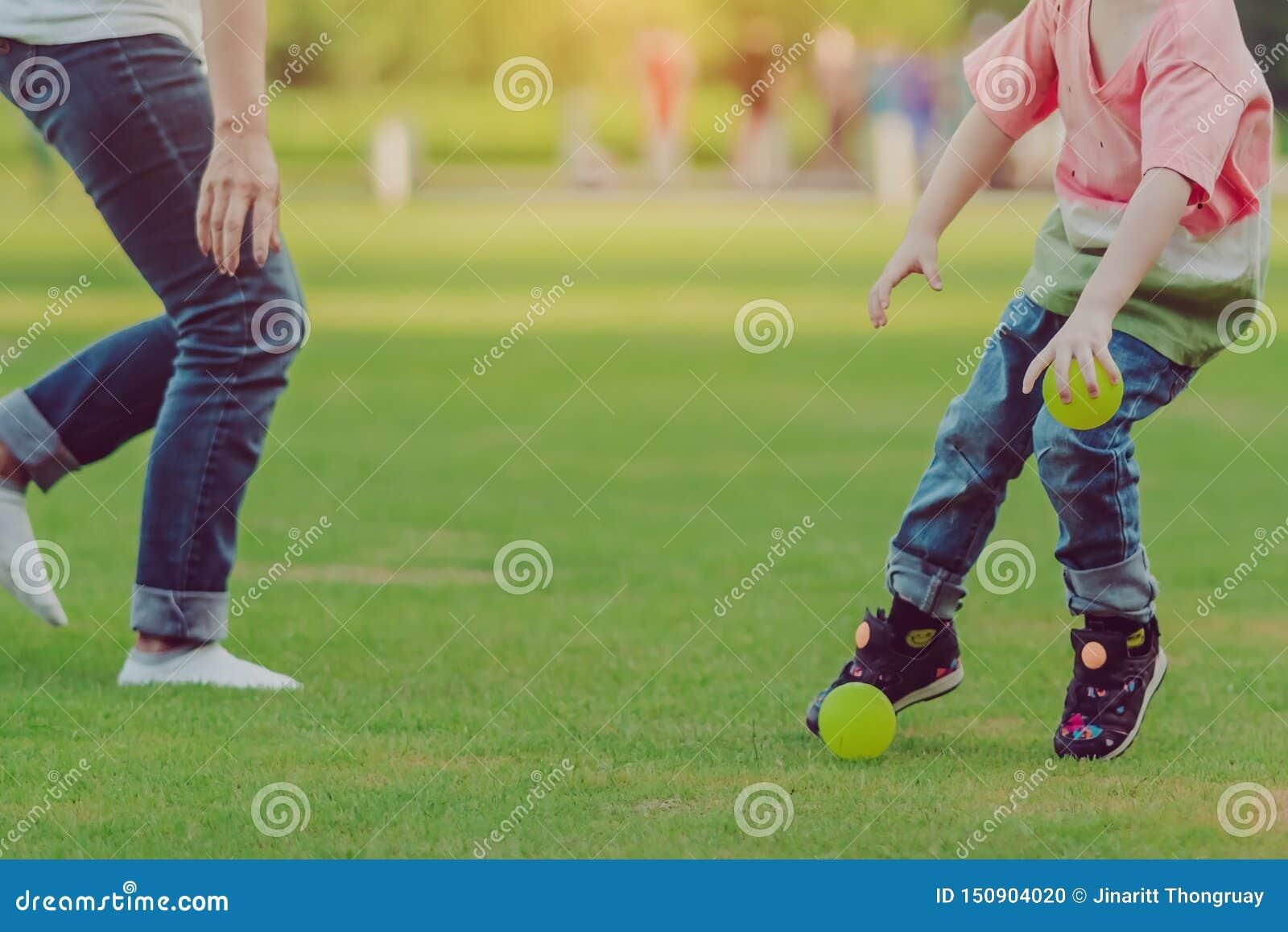 孩子享用对使用与在领域的一点球