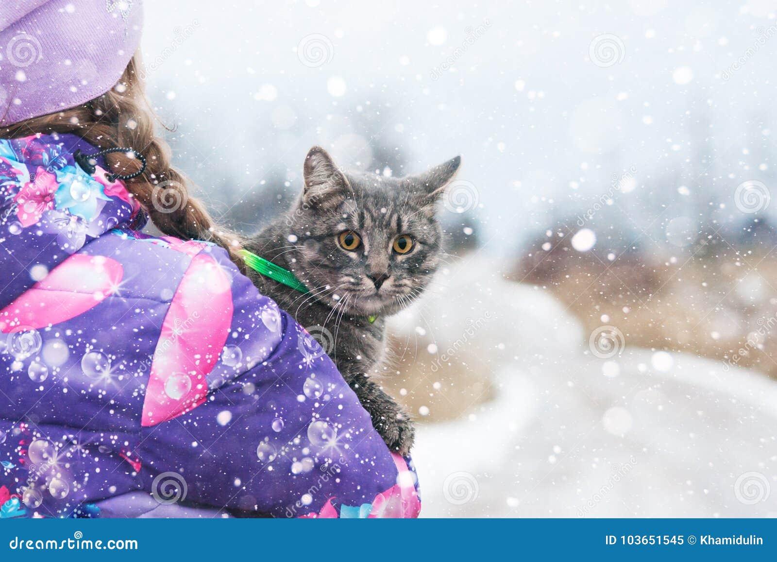 孩子在冬天拥抱在路的一只猫