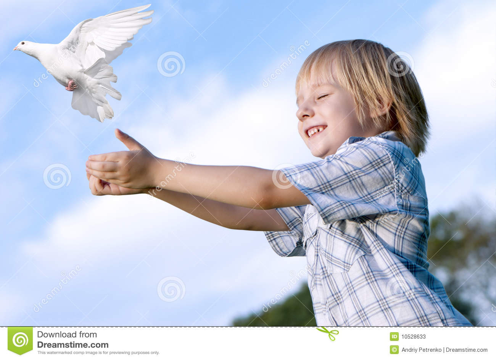 孩子鸽子白色