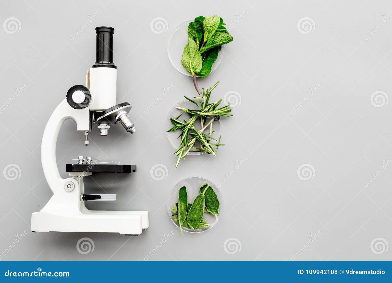 安全食物 无政府主义 在显微镜附近的绿色在灰色背景顶视图拷贝空间