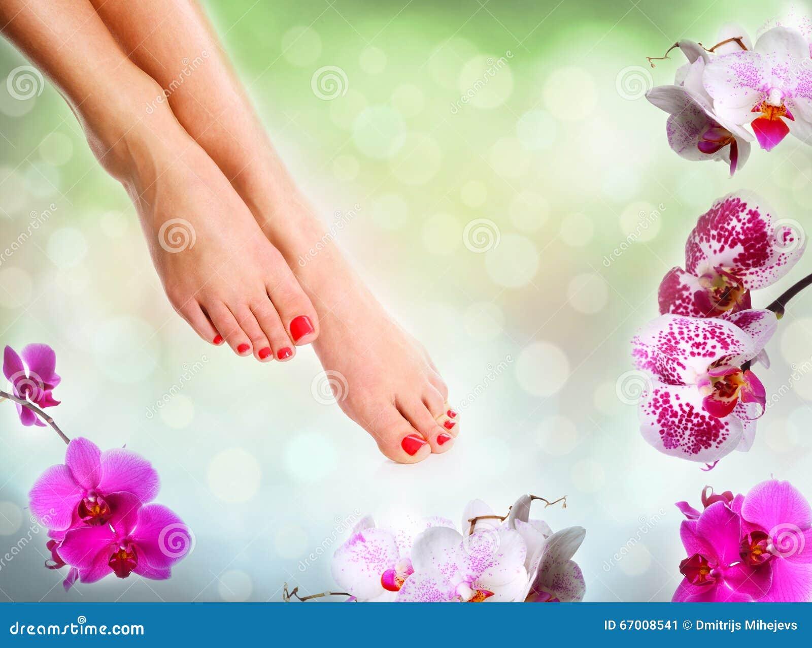 完善的女性脚
