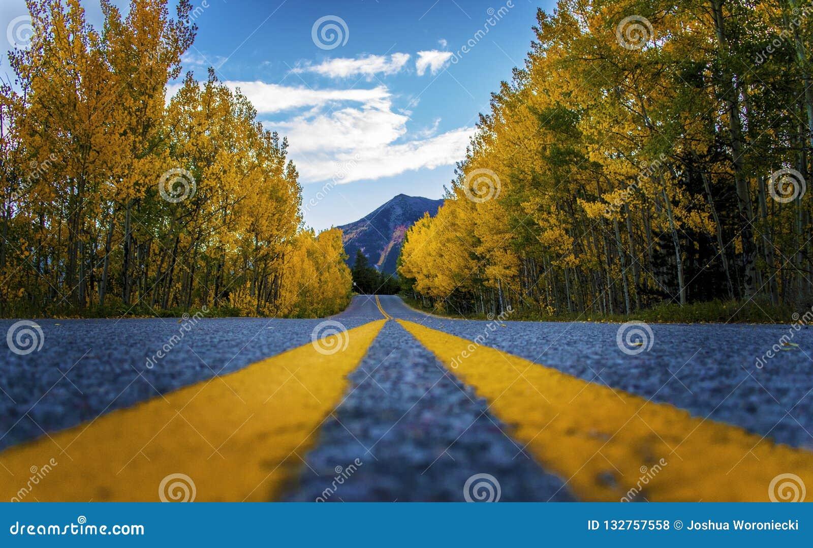 完善的山科罗拉多旅行路通过在10月山的秋天颜色编织
