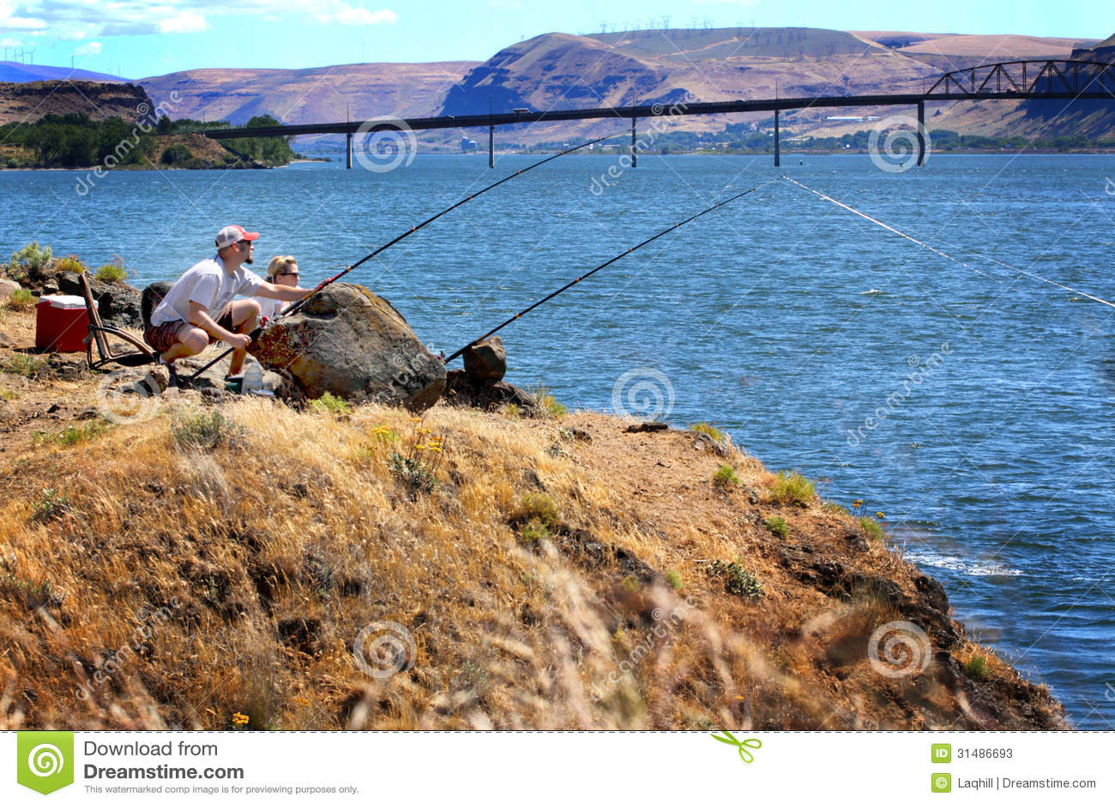 完善的渔斑点