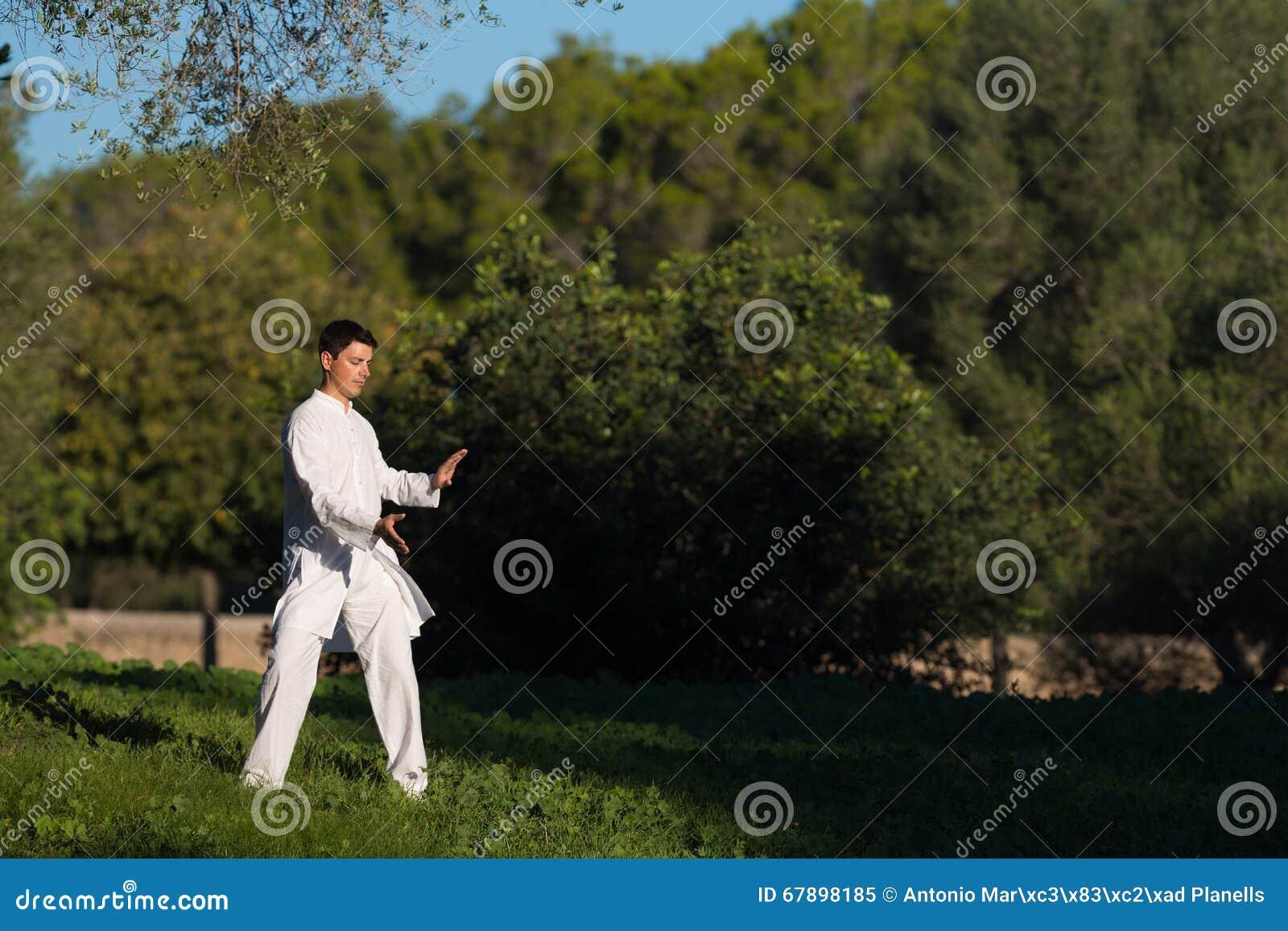 实践太极拳的年轻人在公园