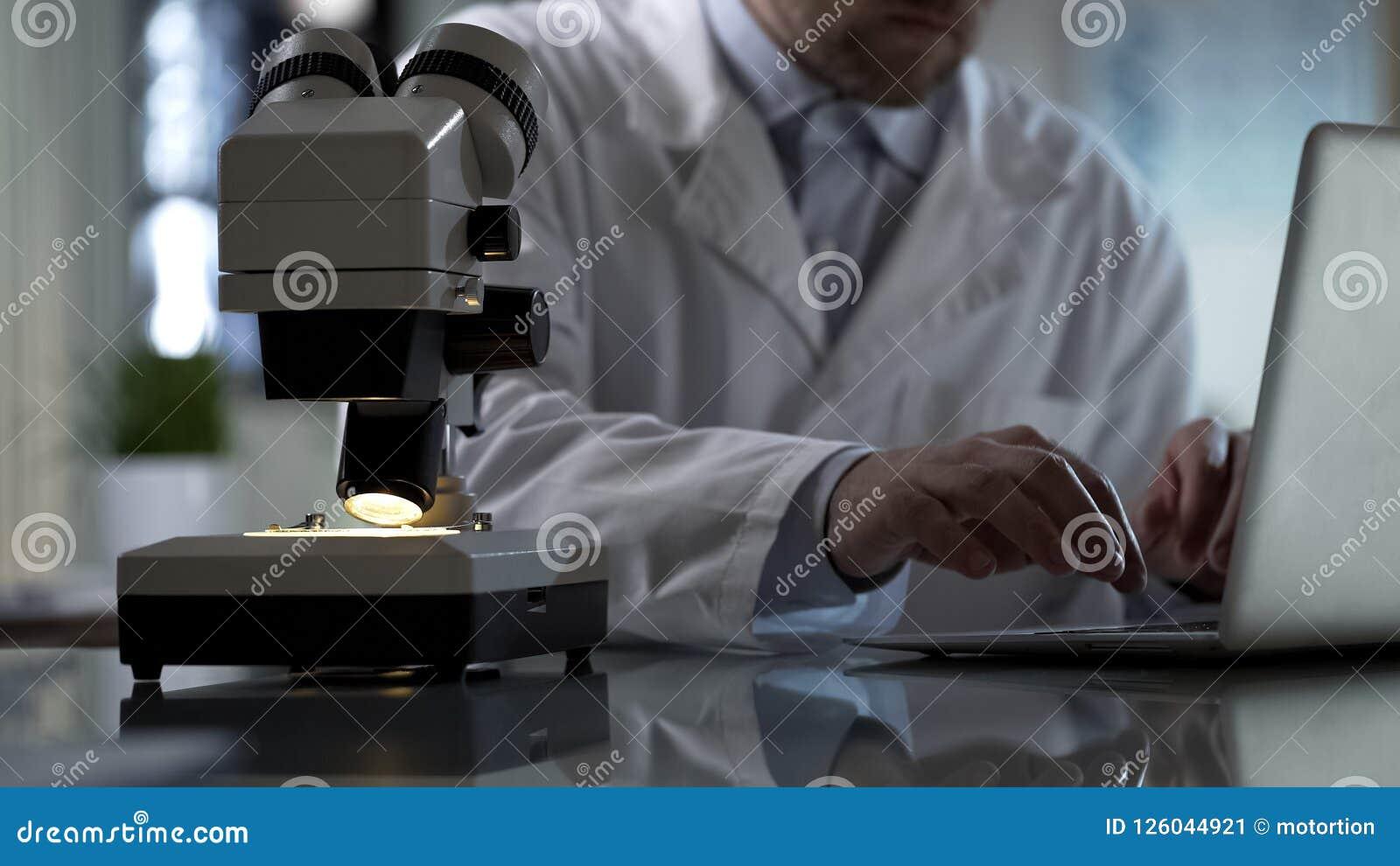 实验室专家键入在膝上型计算机,输入的实验导致报告文件