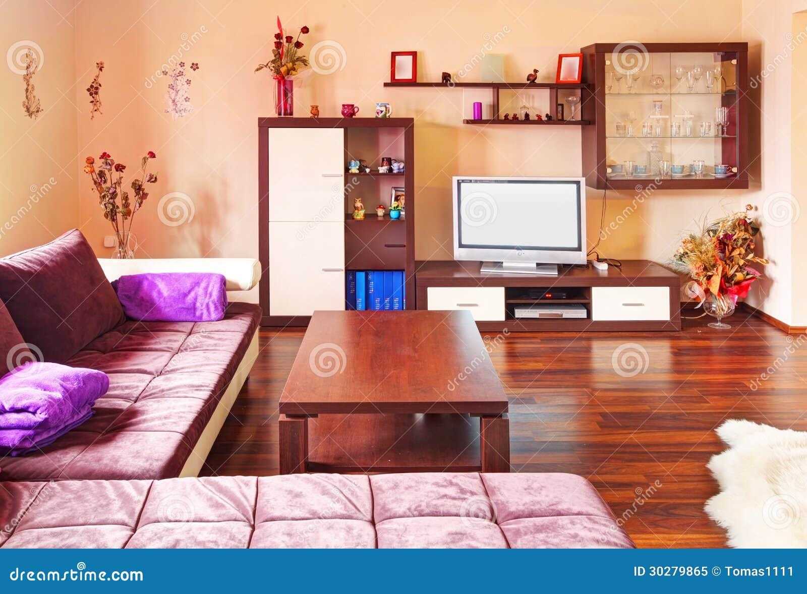 现代的客厅