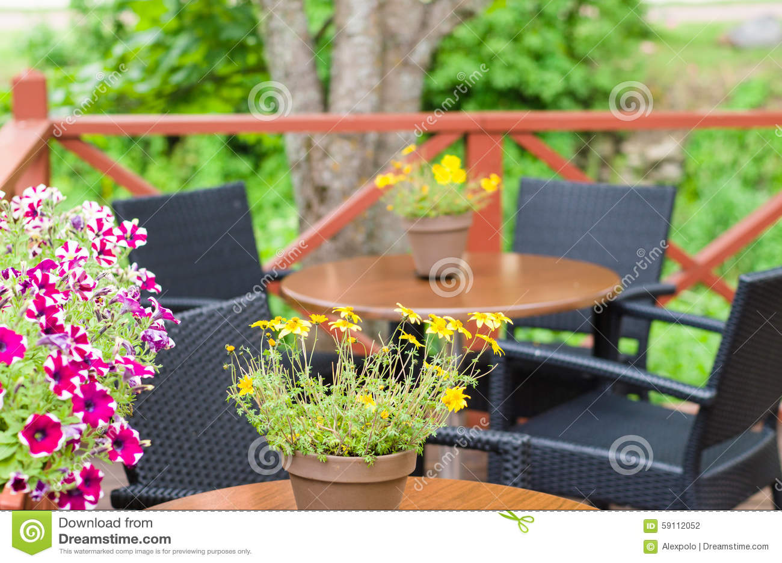 室外大阳台咖啡馆的被弄脏的图象与花盆的