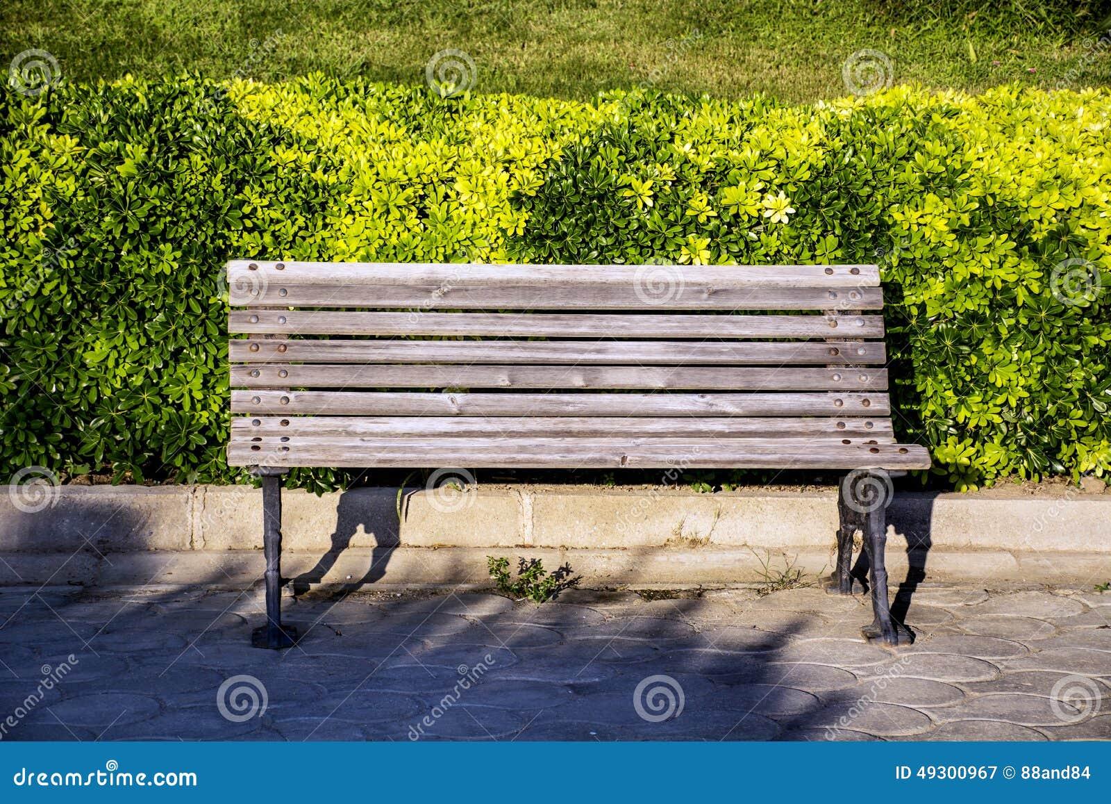 木公园长椅在一个绿色庭院里.图片