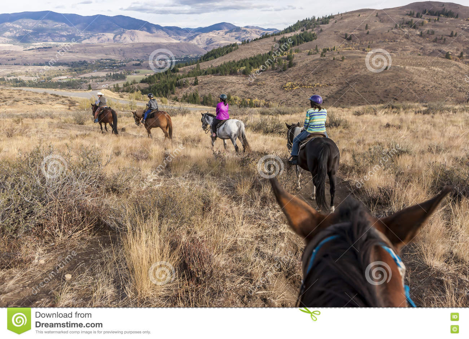 家庭为马背乘驾