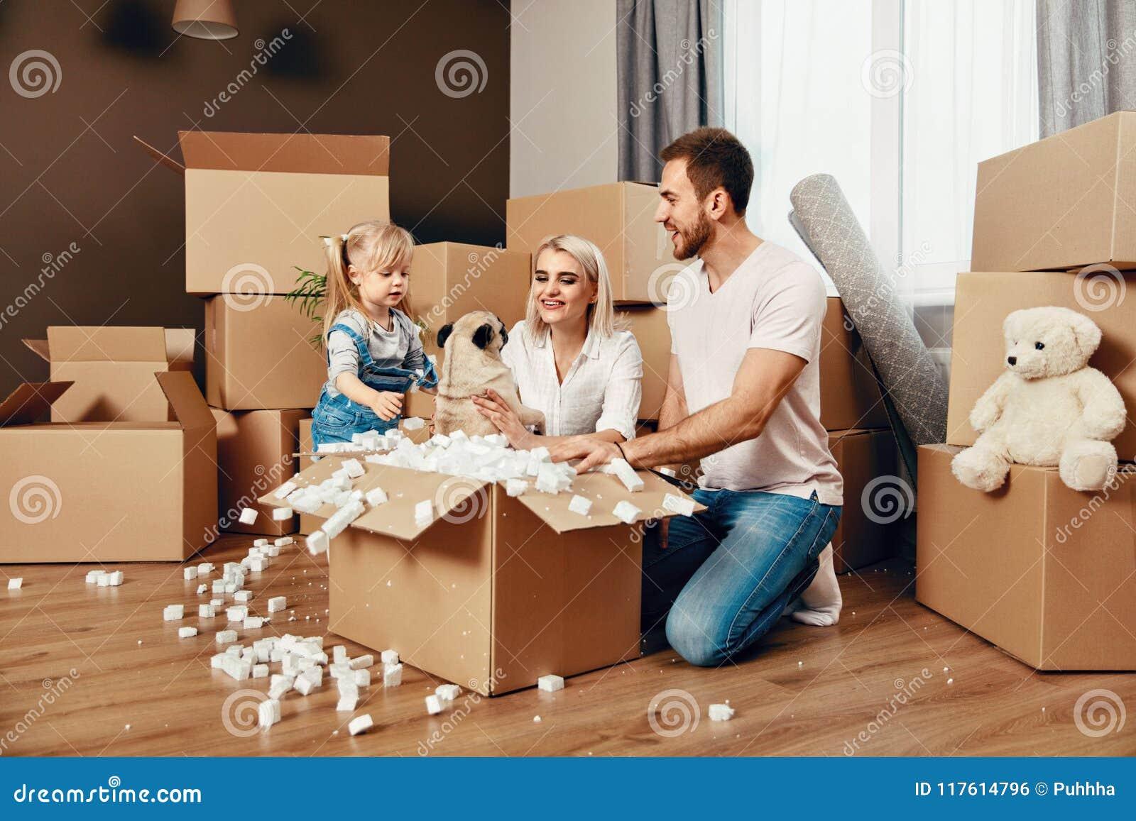 家庭移动 有箱子的愉快的人在新的公寓