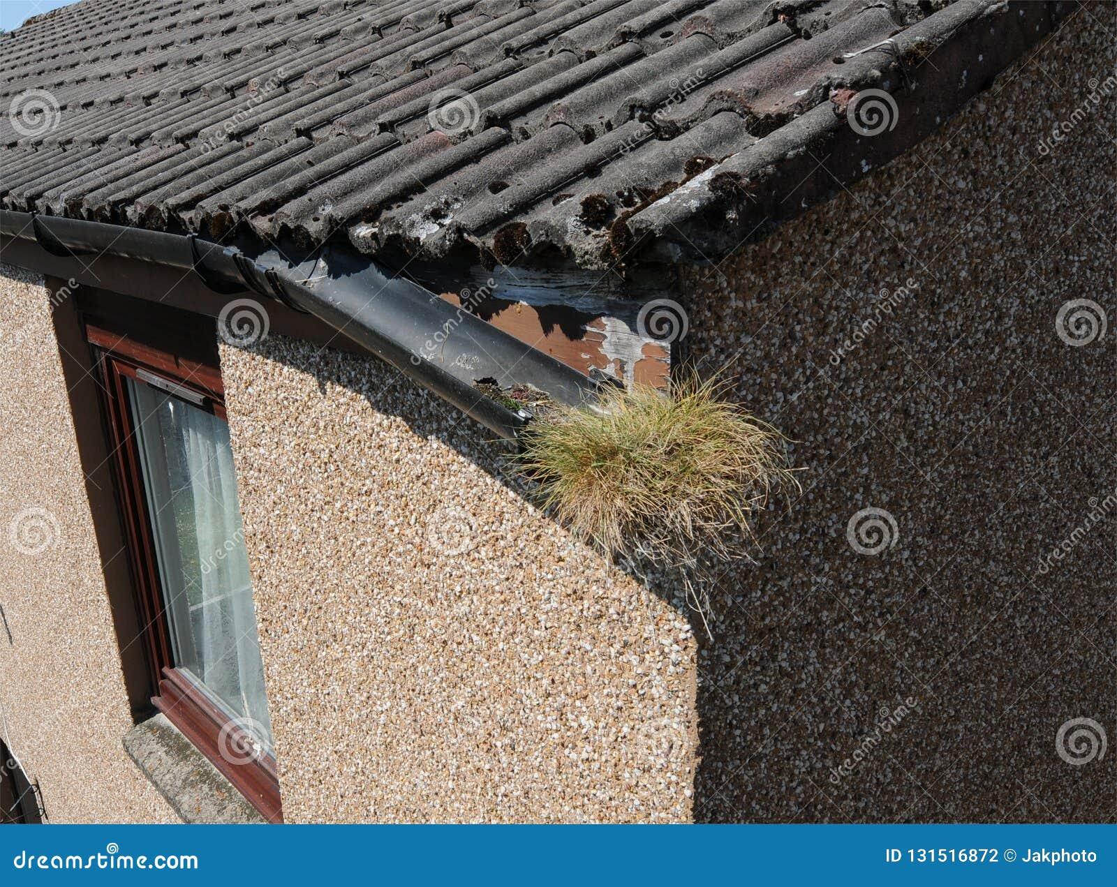 家庭维护房屋修复残破的天沟流失损伤