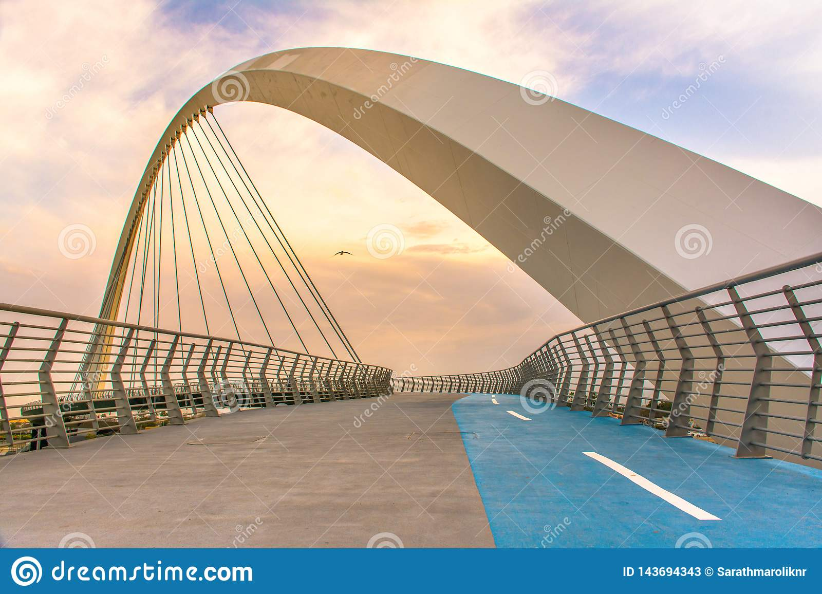 容忍桥梁参观的迪拜地方在迪拜