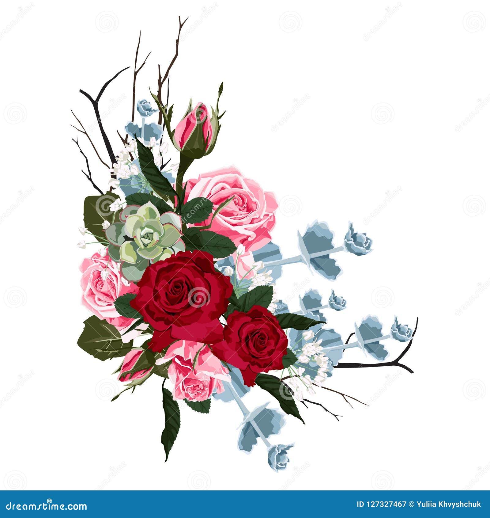 容易的分行编辑花卉 开花红色,伯根地上升了,绿色叶子和多汁植物