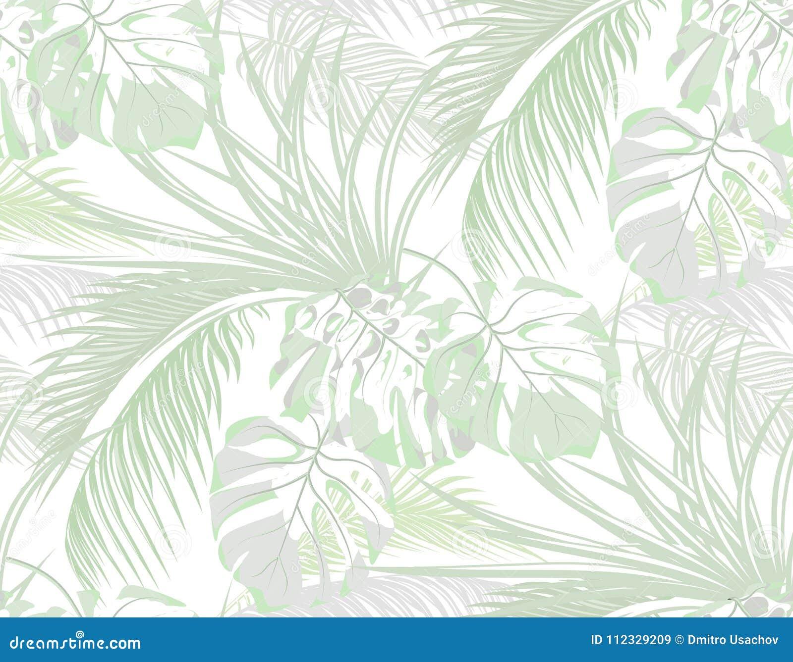密林 热带棕榈叶子背景,妖怪,龙舌兰 无缝 查出在白色 例证