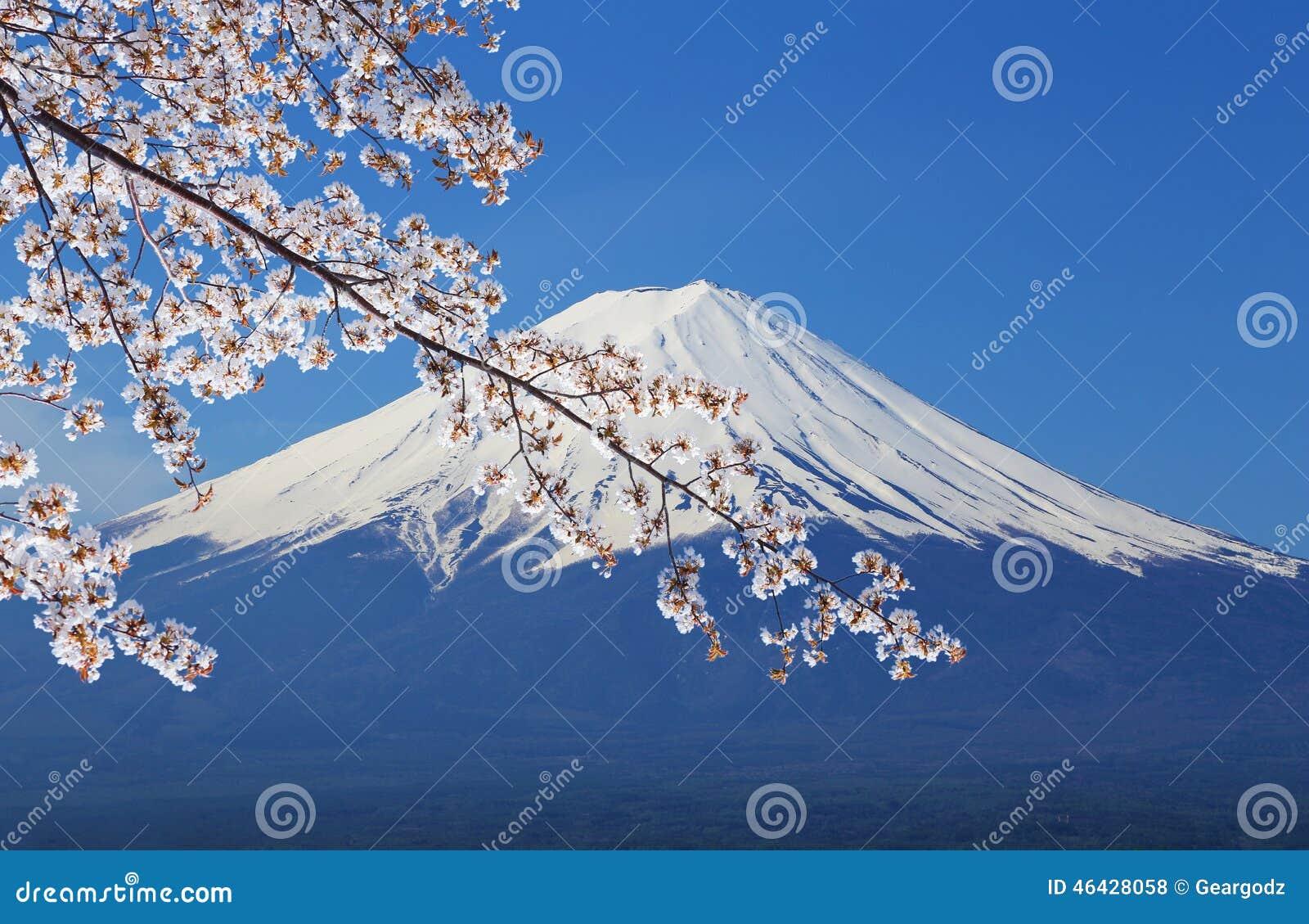富士山,从湖Kawaguchiko的看法