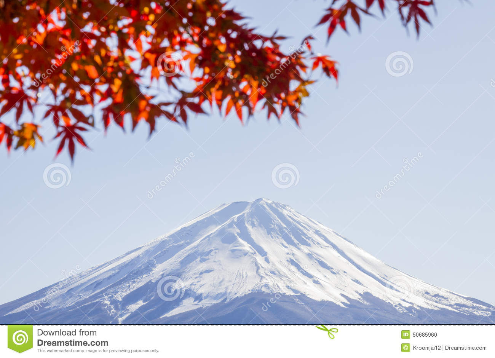 Download 富士mt 库存照片. 图片 包括有 槭树, 空白, 日语, 风景, 挂接, fujiyama, 自治权, 富士 - 50685960