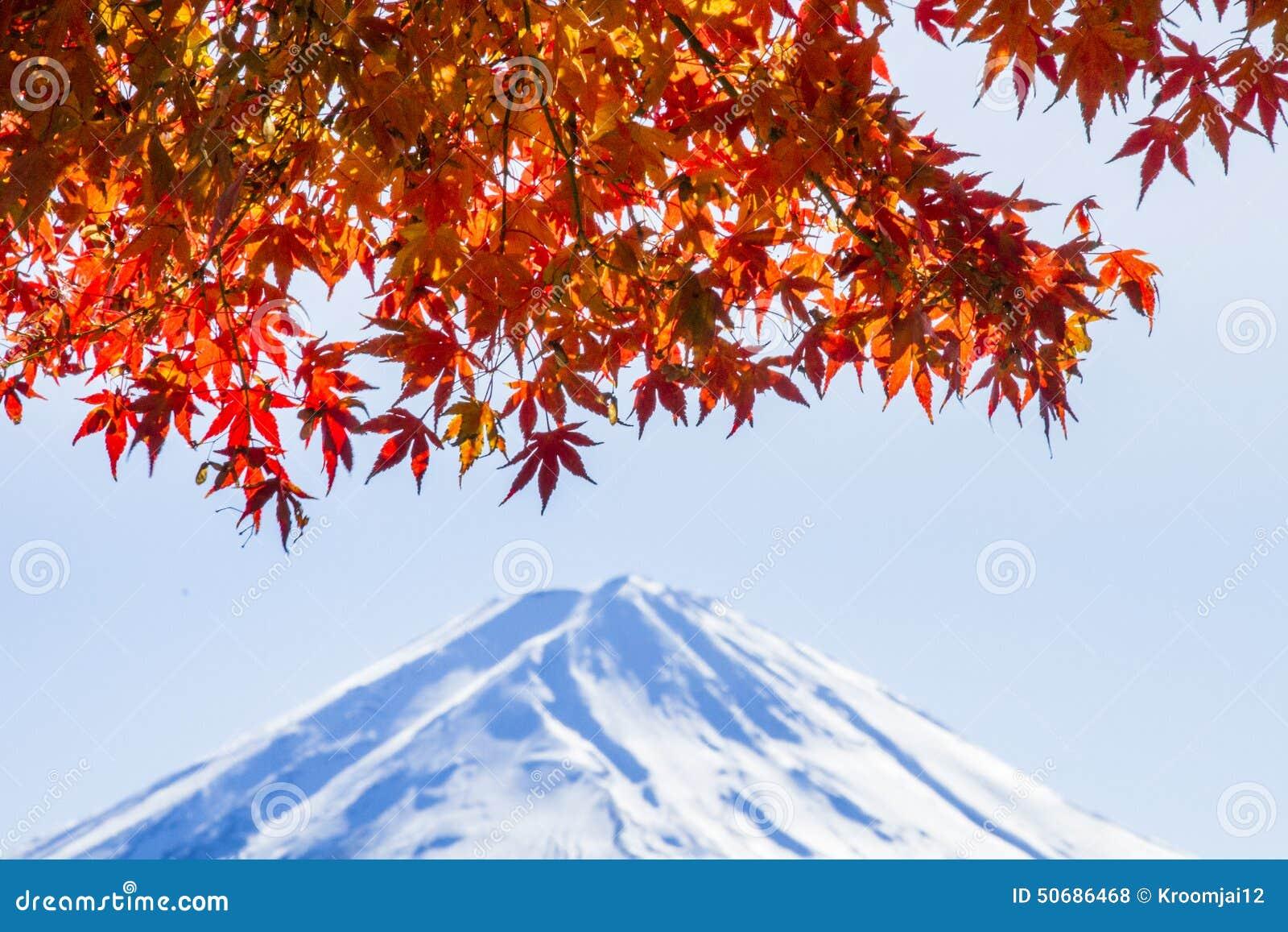 Download 富士mt 库存照片. 图片 包括有 槭树, 视图, 背包, 蓝蓝, 挂接, beautifuler, 天空 - 50686468