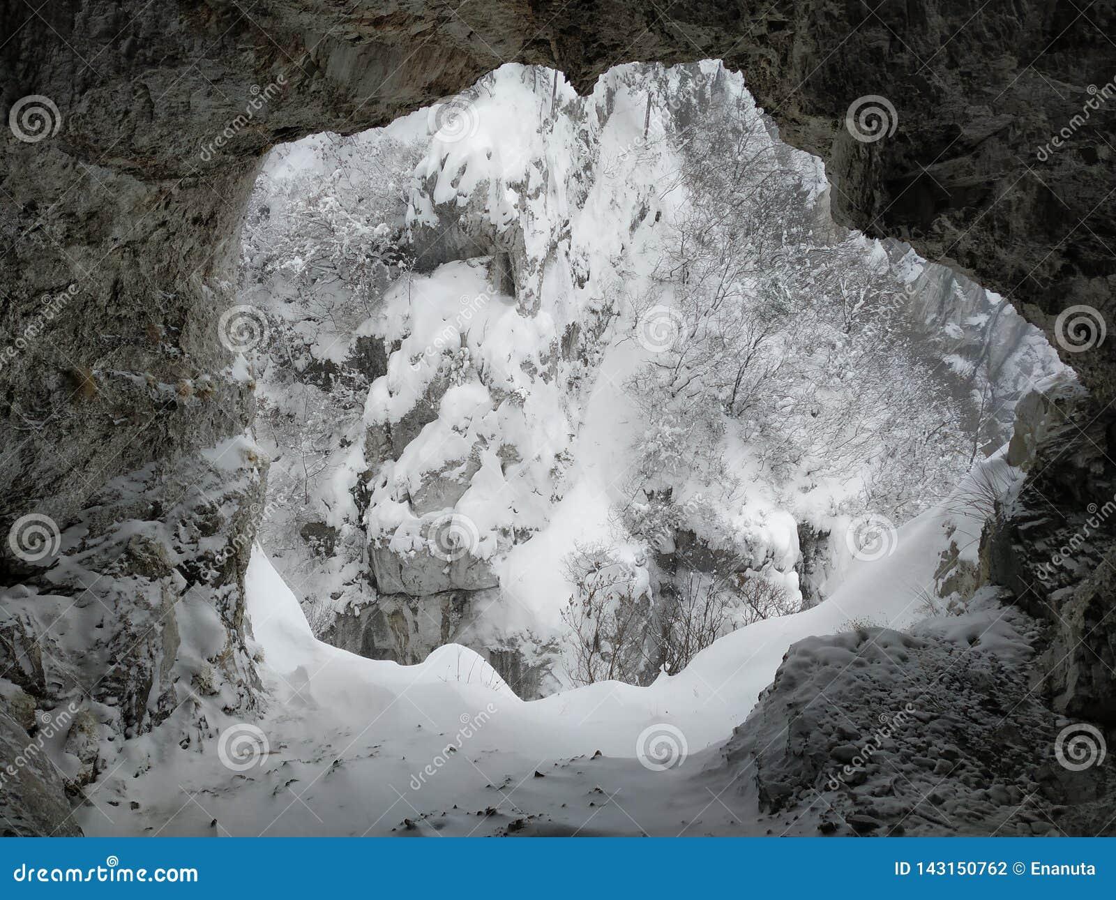 对在雪盖的洞的入口