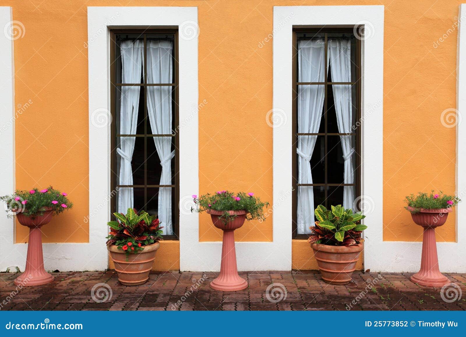 对称的落地长窗的花盆