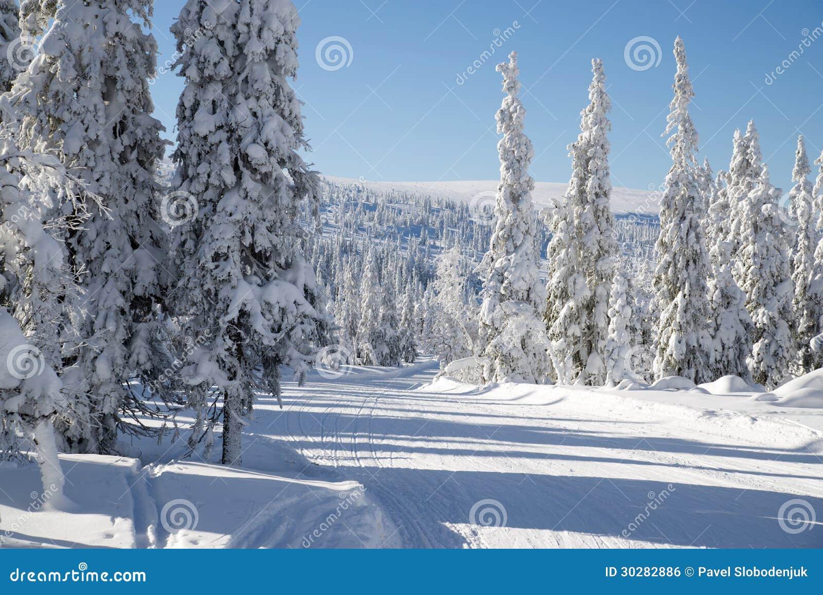 弯曲的滑雪轨道