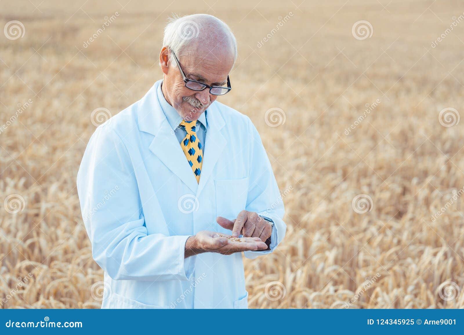 寻找新的种子的质量的农业科学家
