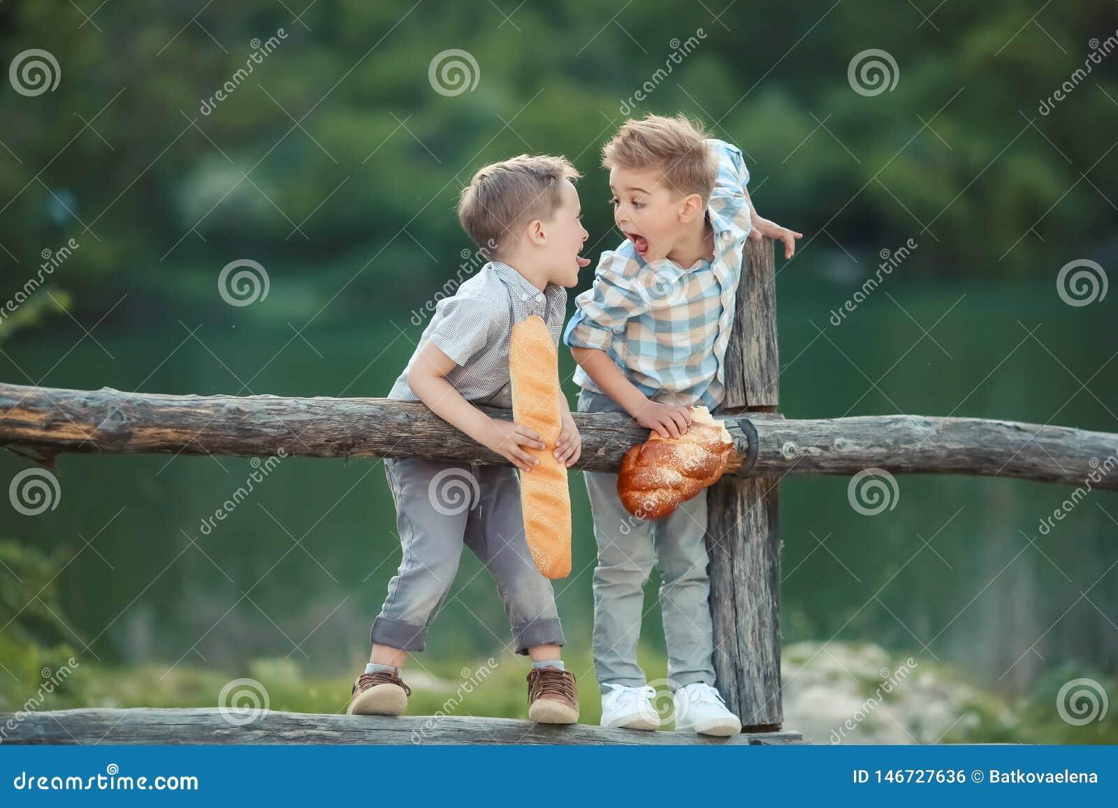 寻找某事的篱芭的两个男孩