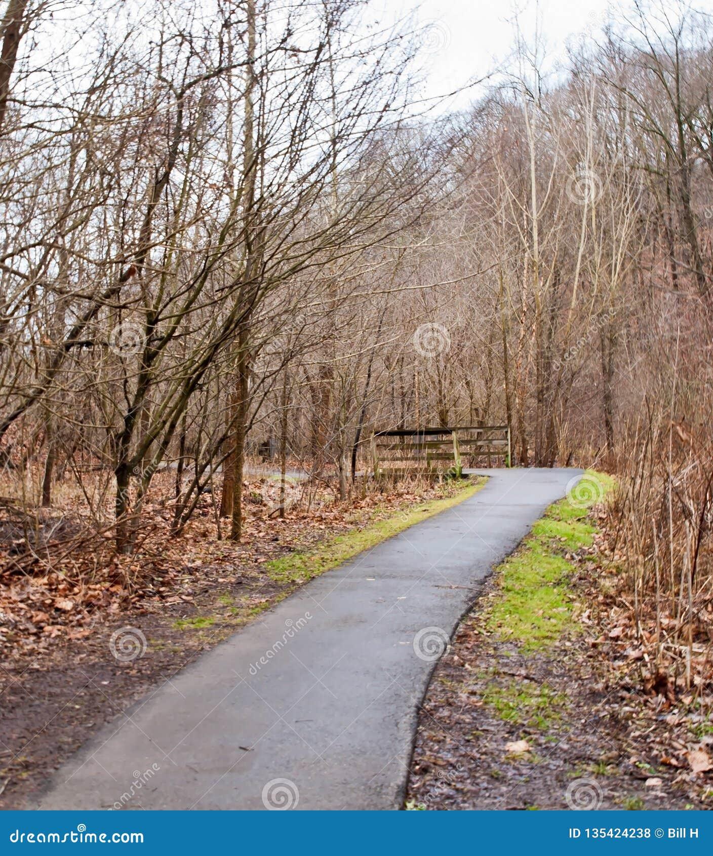 导致一个木桥的一条被铺的道路在弗利克公园