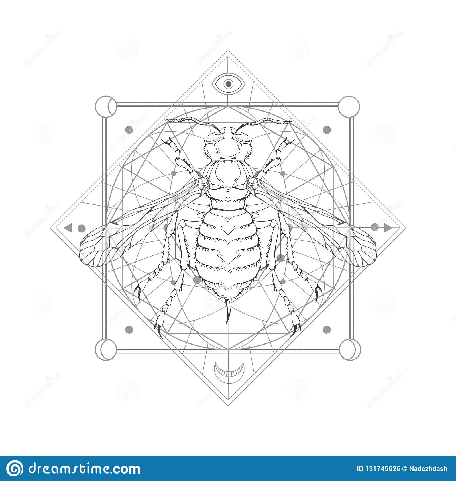 导航与手拉的黄蜂的例证和在白色背景的神圣的几何标志 抽象神秘的标志