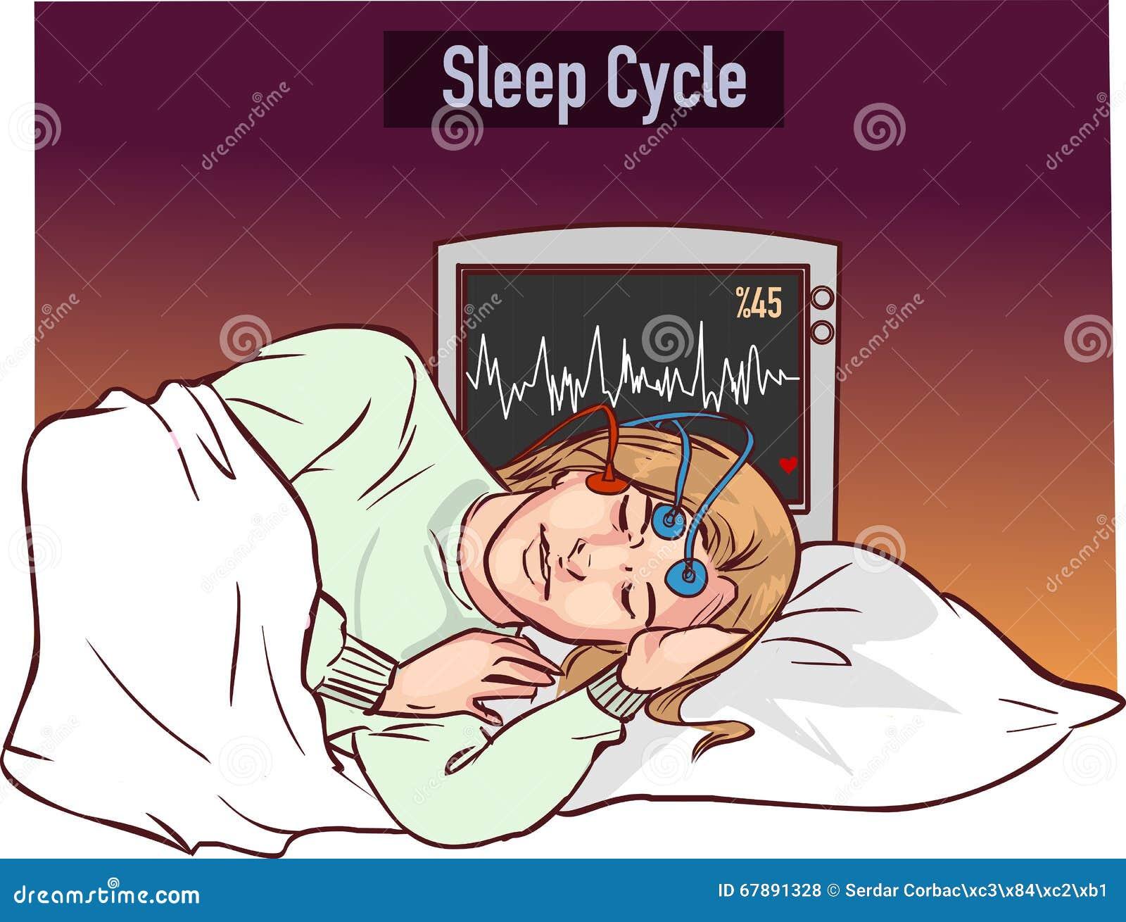 导航睡觉一个的女孩的例证并且睡觉周期gr