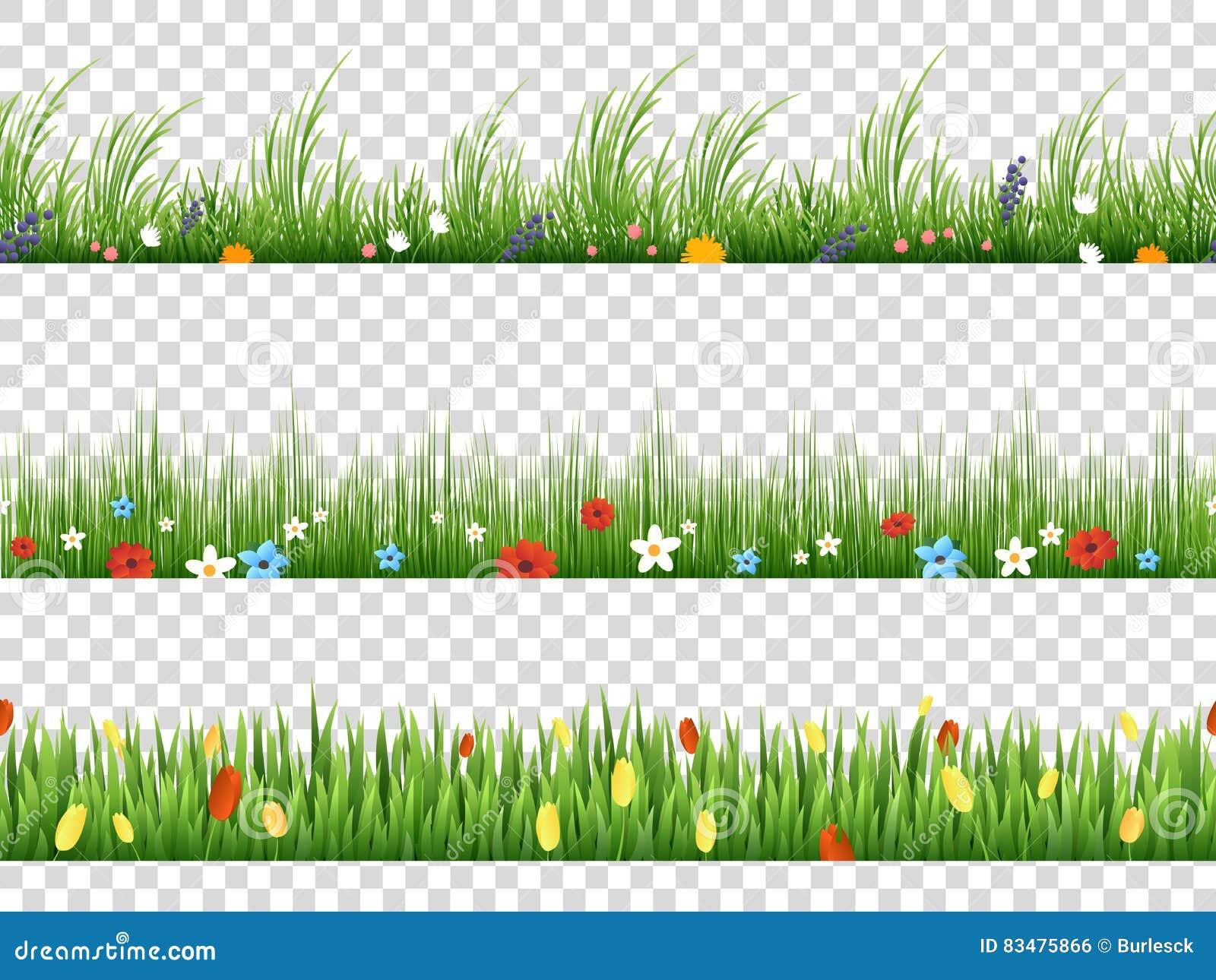 导航绿草和春天花自然在透明背景的边界样式