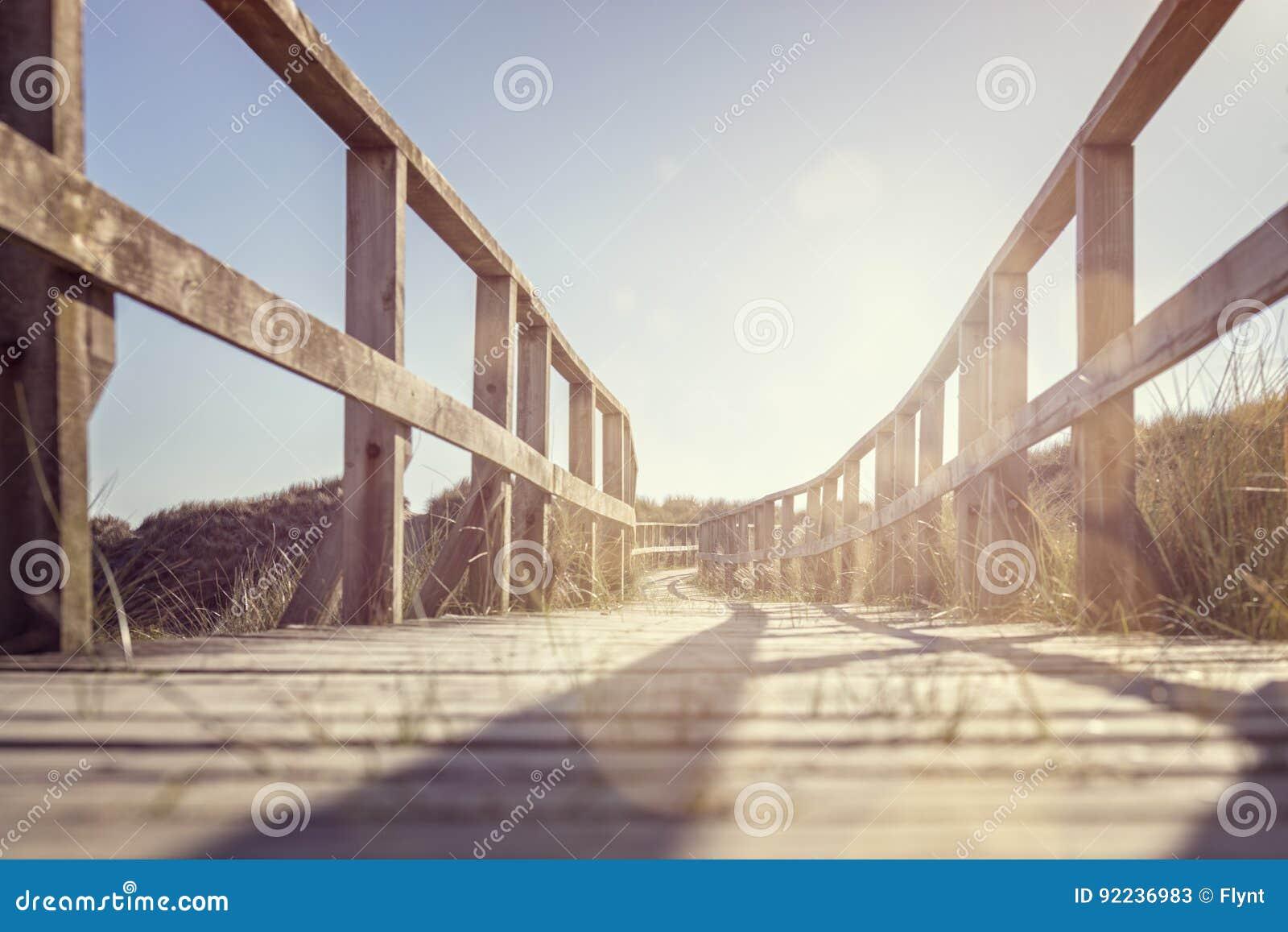 导致在沙丘的海滩的木板走道