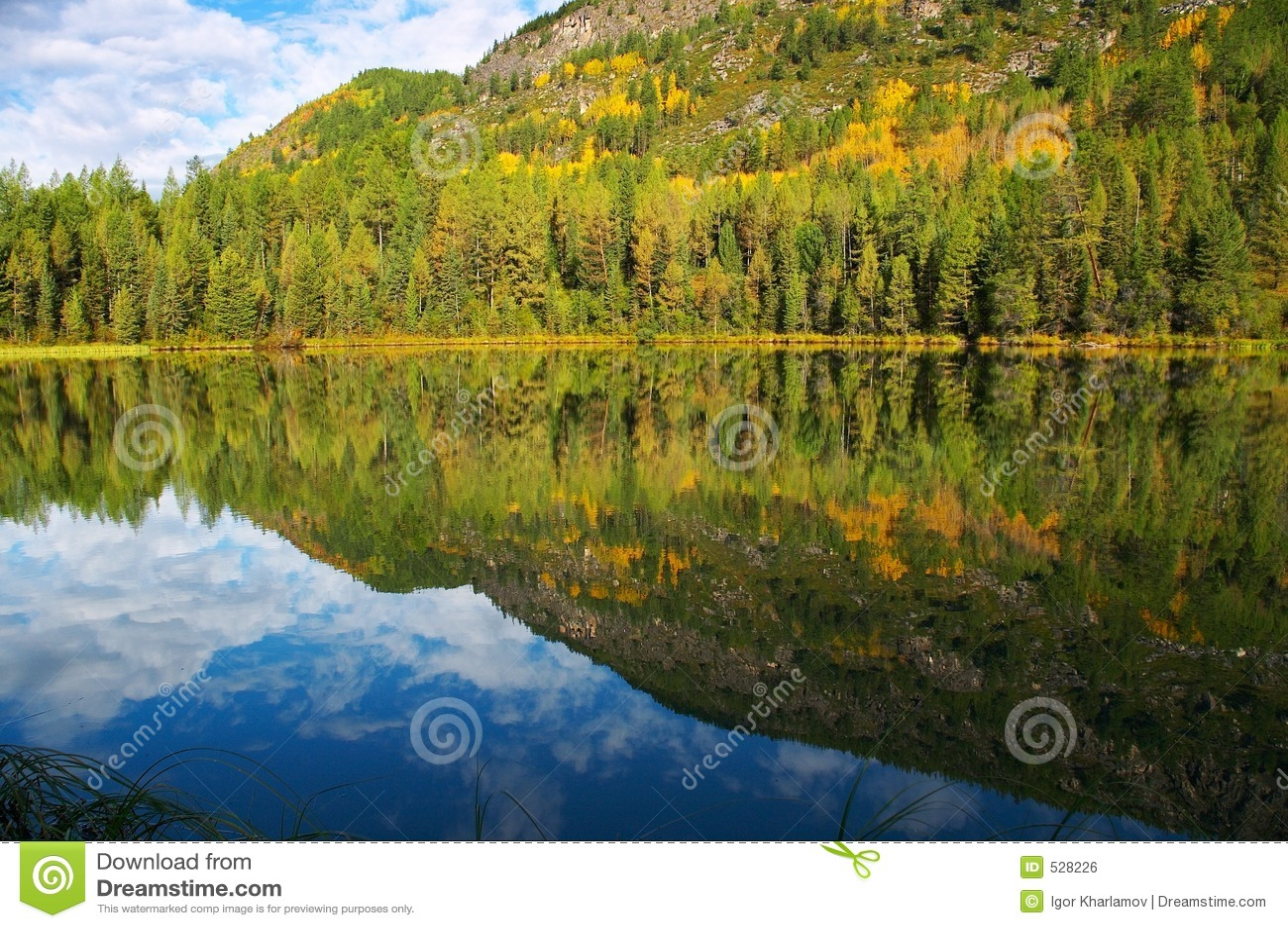 Download 小冷杉的湖 库存照片. 图片 包括有 红色, 秋天, 冷杉, 本质, 二者择一地, 结构树, 反映, 形成, 天空 - 528226