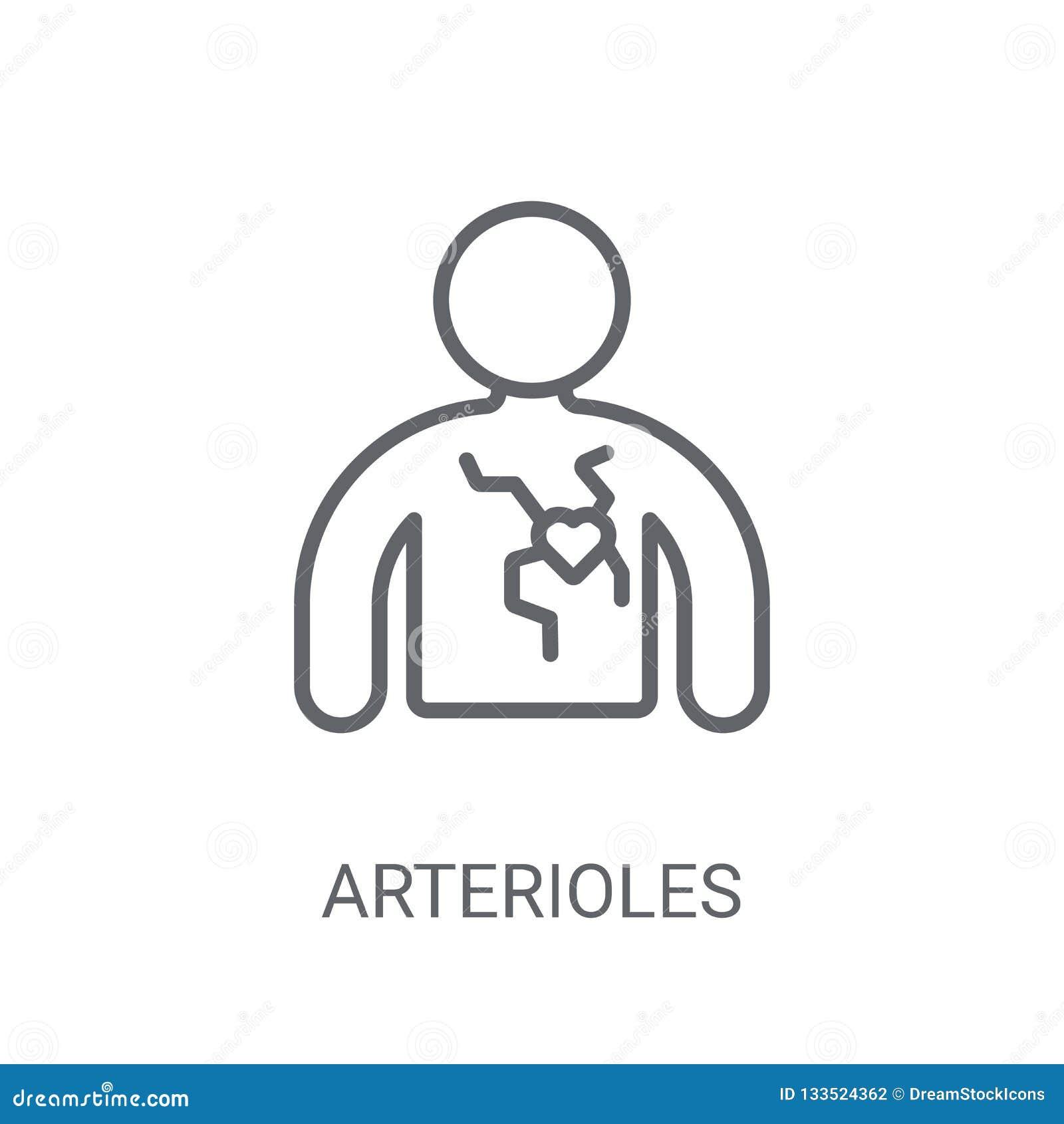 小动脉象 在白色backgro的时髦小动脉商标概念
