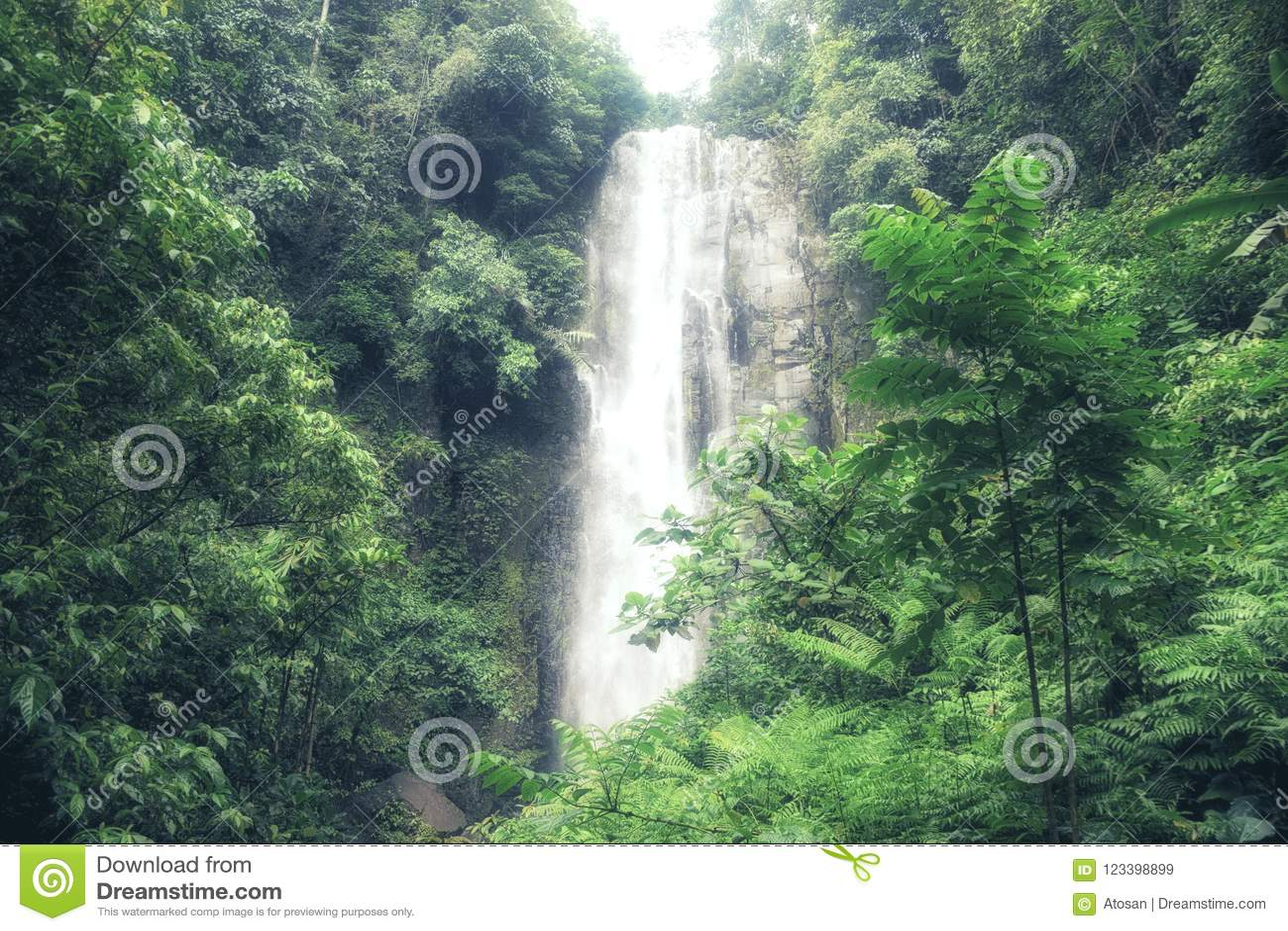 小和beautifull托莫洪Selatan瀑布在苏拉威西岛, Ma