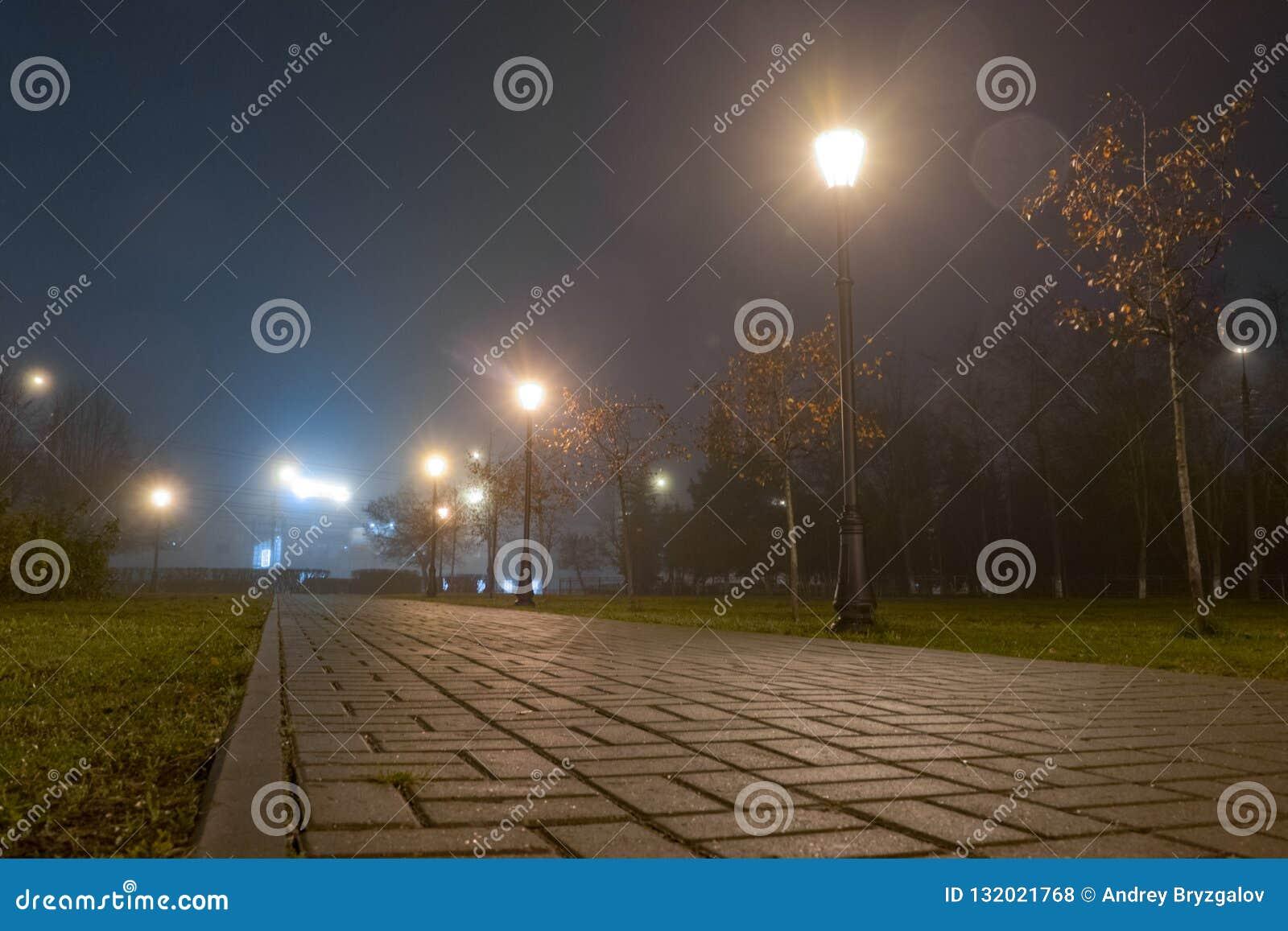 小径在城市公园在雾的晚上与街灯 在秋天胡同的美好的有雾的晚上有灼烧的灯笼的