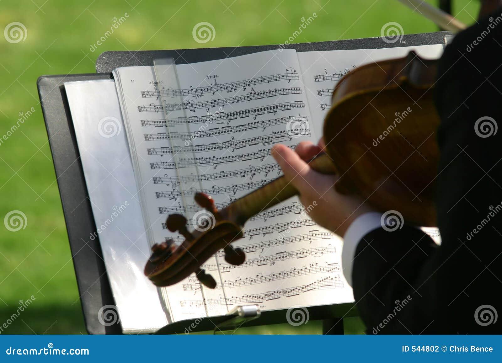 Download 小提琴 库存照片. 图片 包括有 和蔼可亲的, 庆祝, 字符串, 古典, 投反对票, 仪器, 小提琴手, 音乐家 - 544802