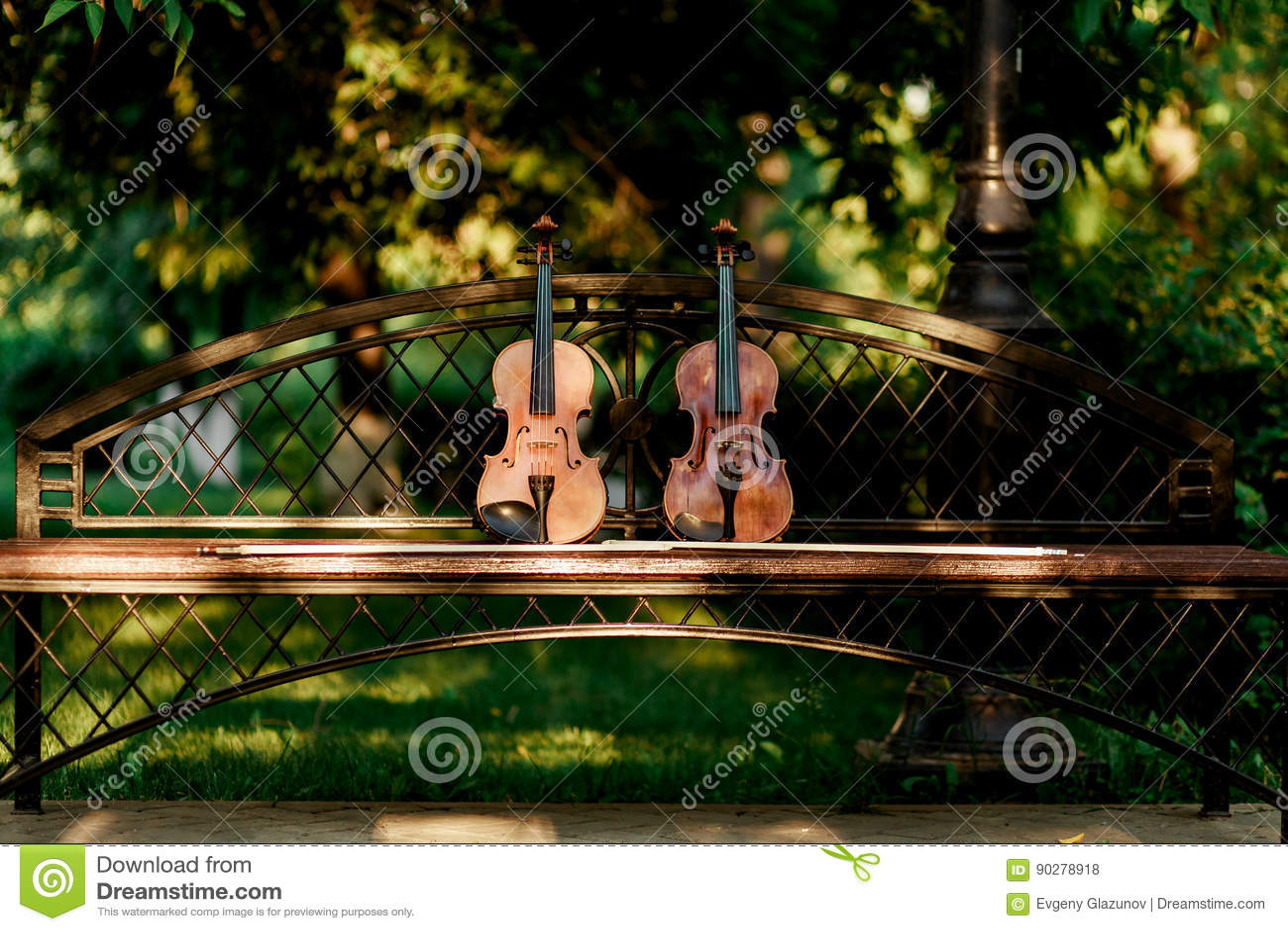 小提琴乐队的乐器 小提琴在长凳的公园