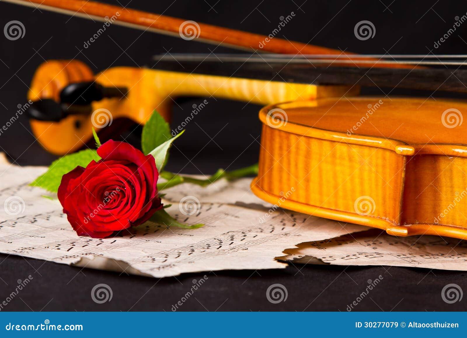 小提琴活页乐谱和上升了