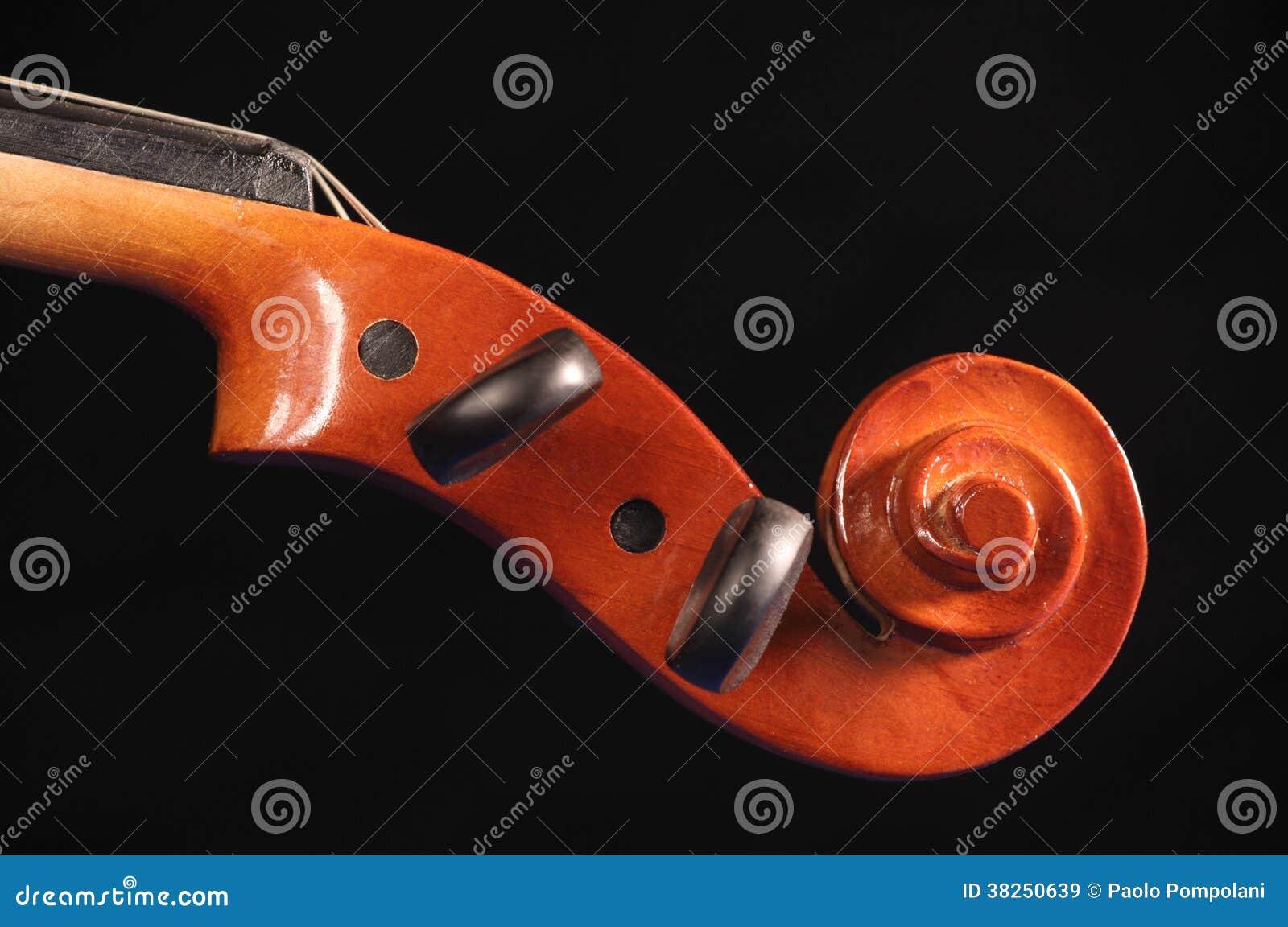 小提琴pegbox
