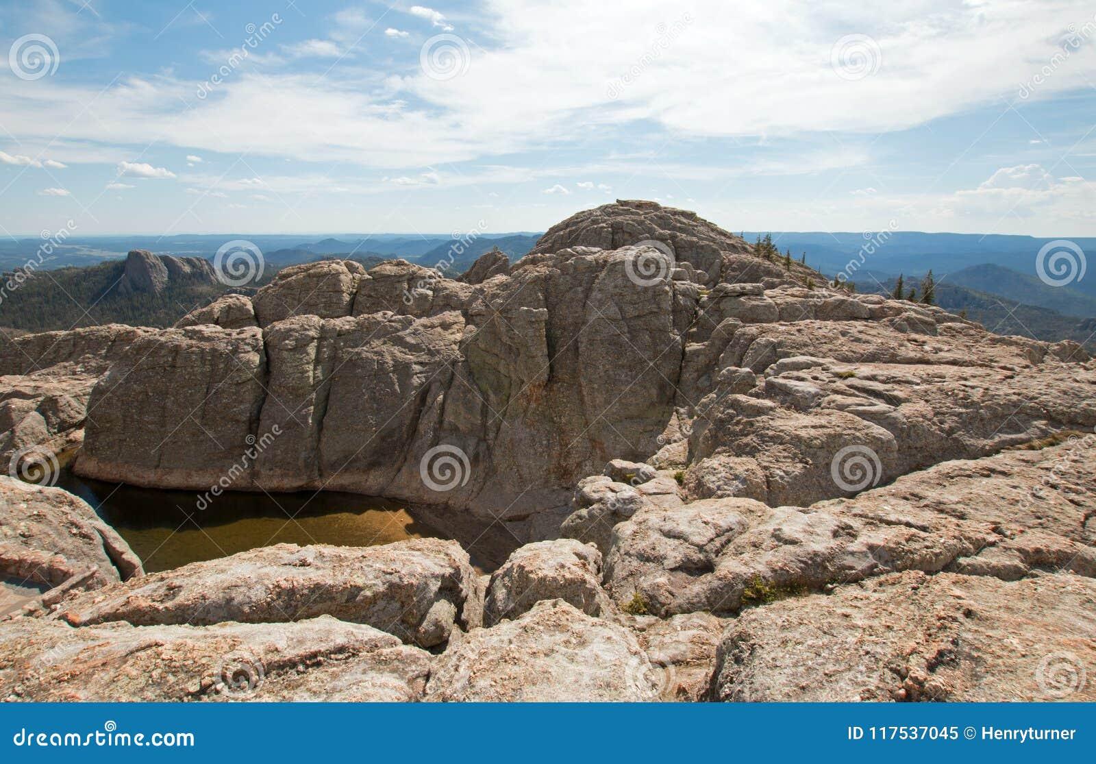 小水库在黑麋鹿峰顶[以前Harney峰顶顶部]在黑山在Custer国家公园在南达科他美国